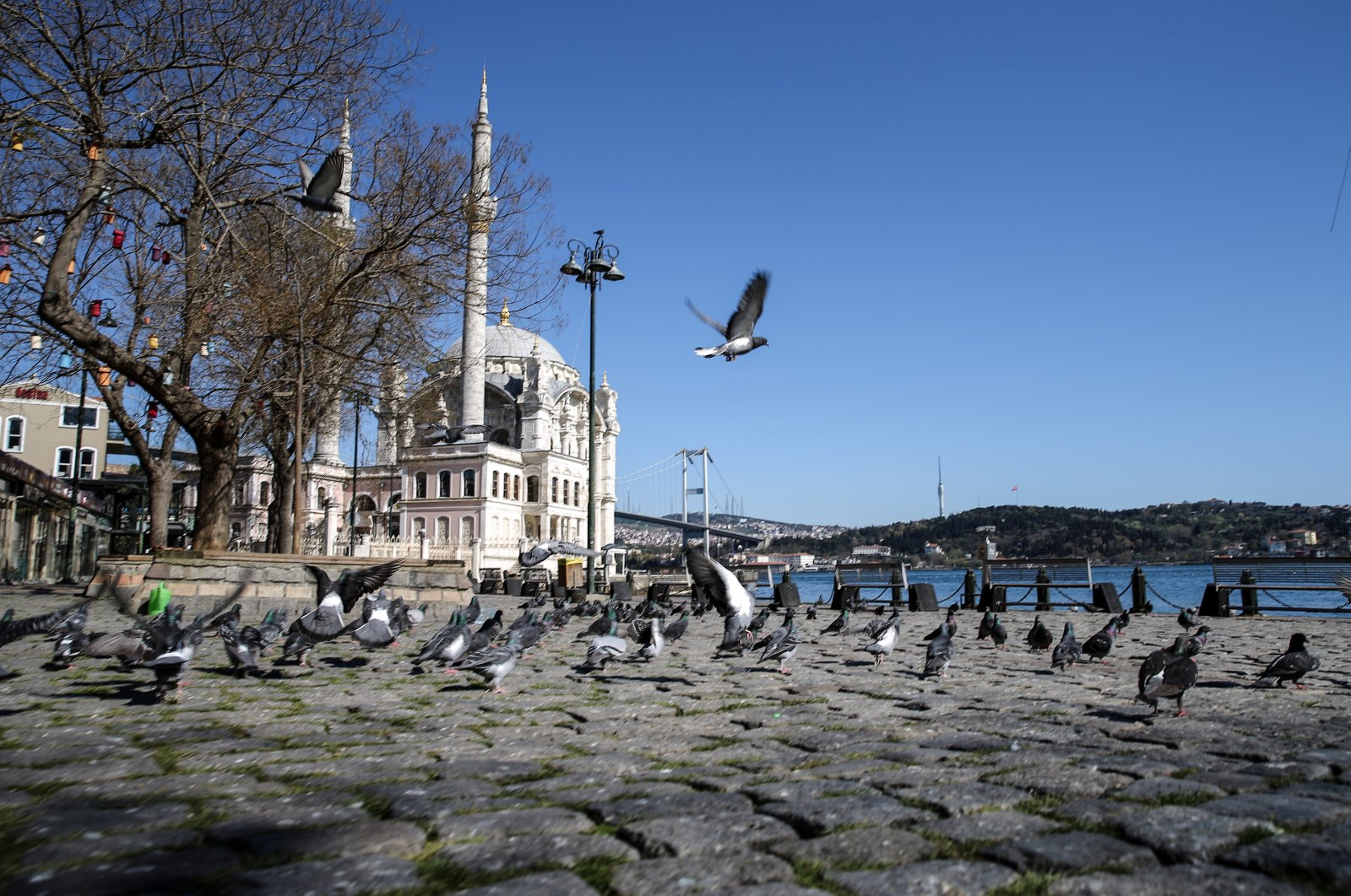 Ortaköy Mosque is seen flocked by birds during a weekend curfew to stem the spread of the coronavirus, Istanbul, Turkey, April 18, 2020. (AA Photo)