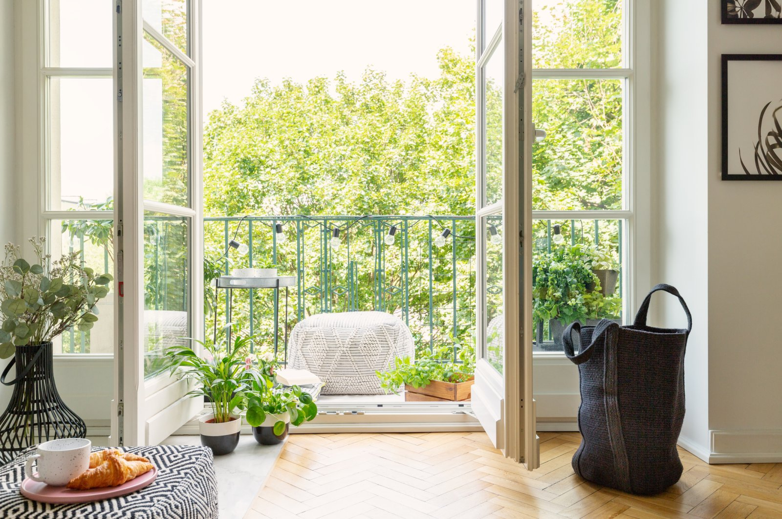 Growing an apartment garden is a great investment for your physical and mental health. (iStock Photo)