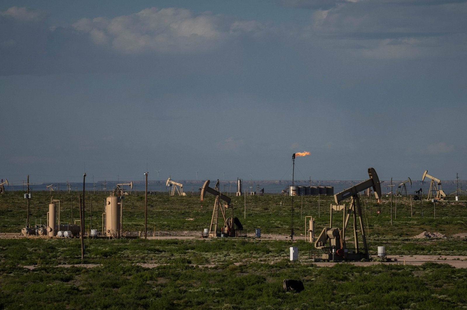 A pump jack operates near Loco Hills in Eddy County, New Mexico, U.S., April 23, 2020. (AFP Photo)