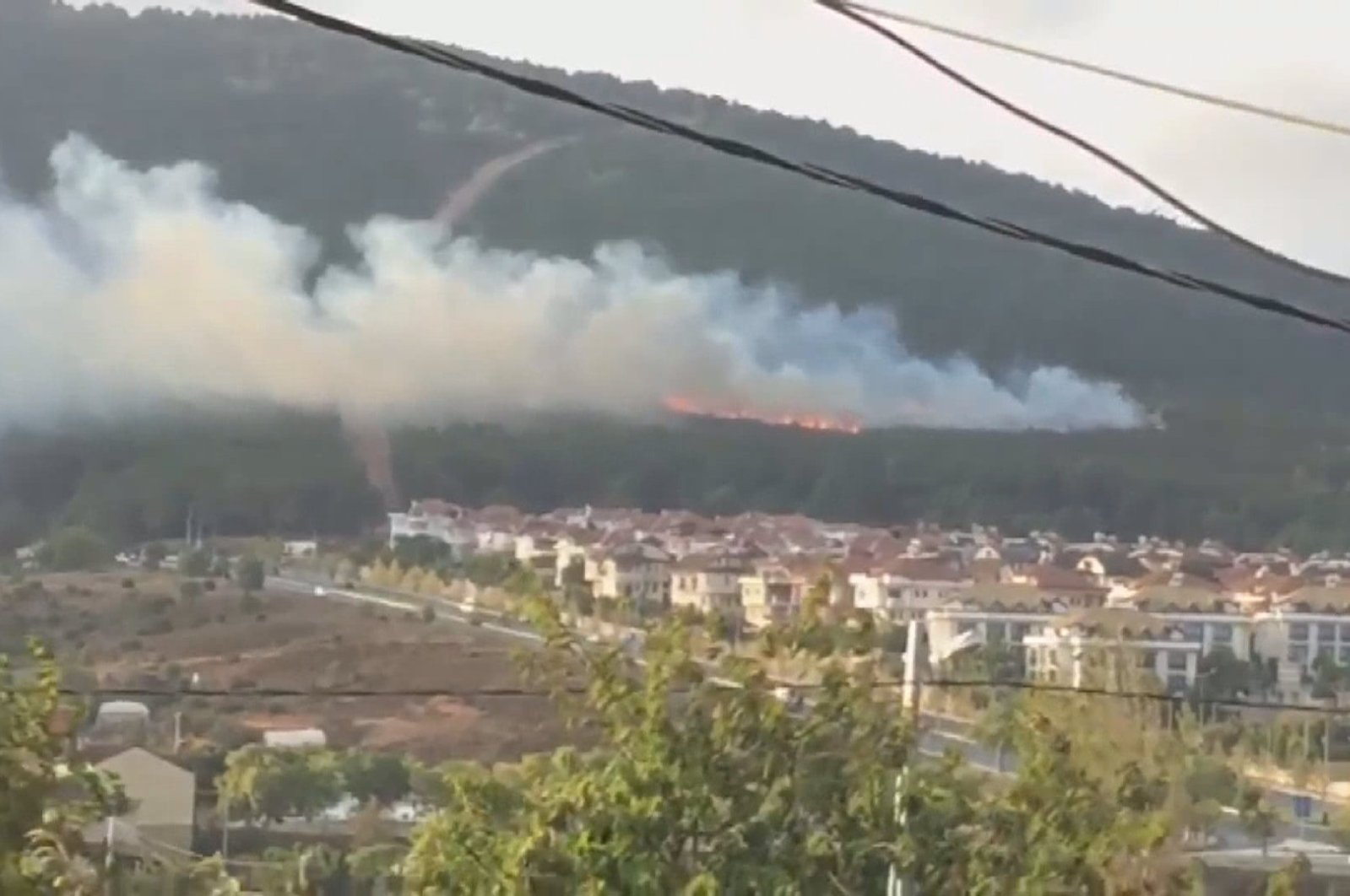 Some 4,865 square meters of land burned in the wildfire that started in the Aydos Forest, Istanbul on Sept. 19, 2019. (DHA Photo)