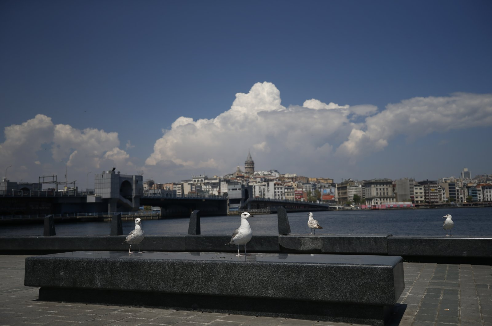 Seagulls are seen by the Golden Horn, deserted due to the coronavirus lockdown, in Istanbul, Turkey, May 1, 2020. (AP Photo)