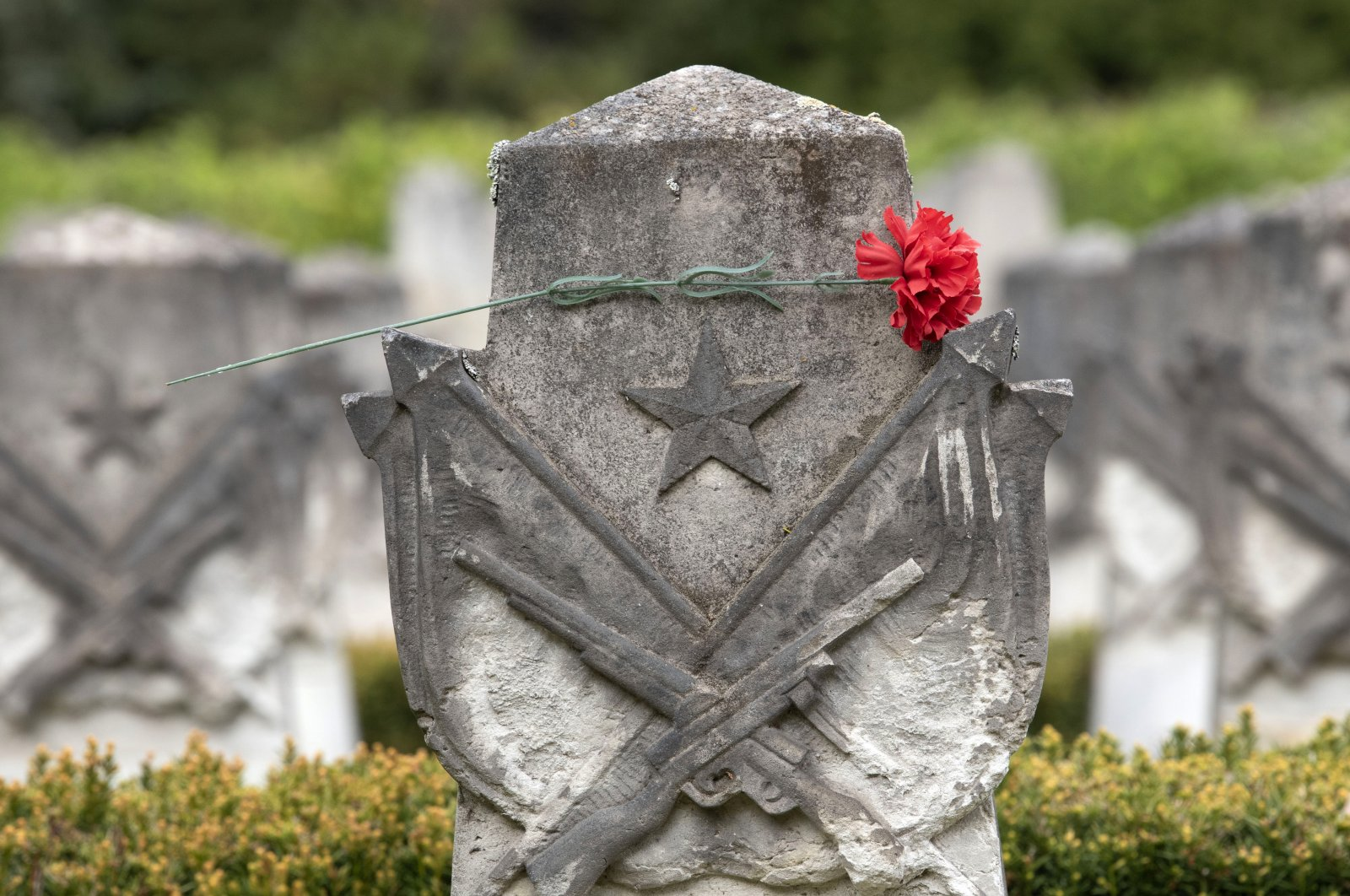 A clove lies on a gravestone at the Soviet grove of honour in Dresden, central Germany, Wednesday, May 6, 2020. (AP Photo)
