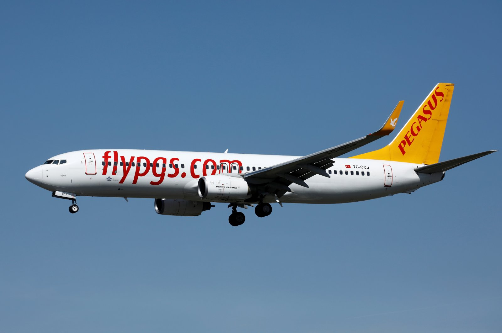 A Boeing 737-800 aircraft, operated by Pegasus Airlines, lands at Orly Airport near Paris, France, Sept. 6, 2019. (Reuters Photo)