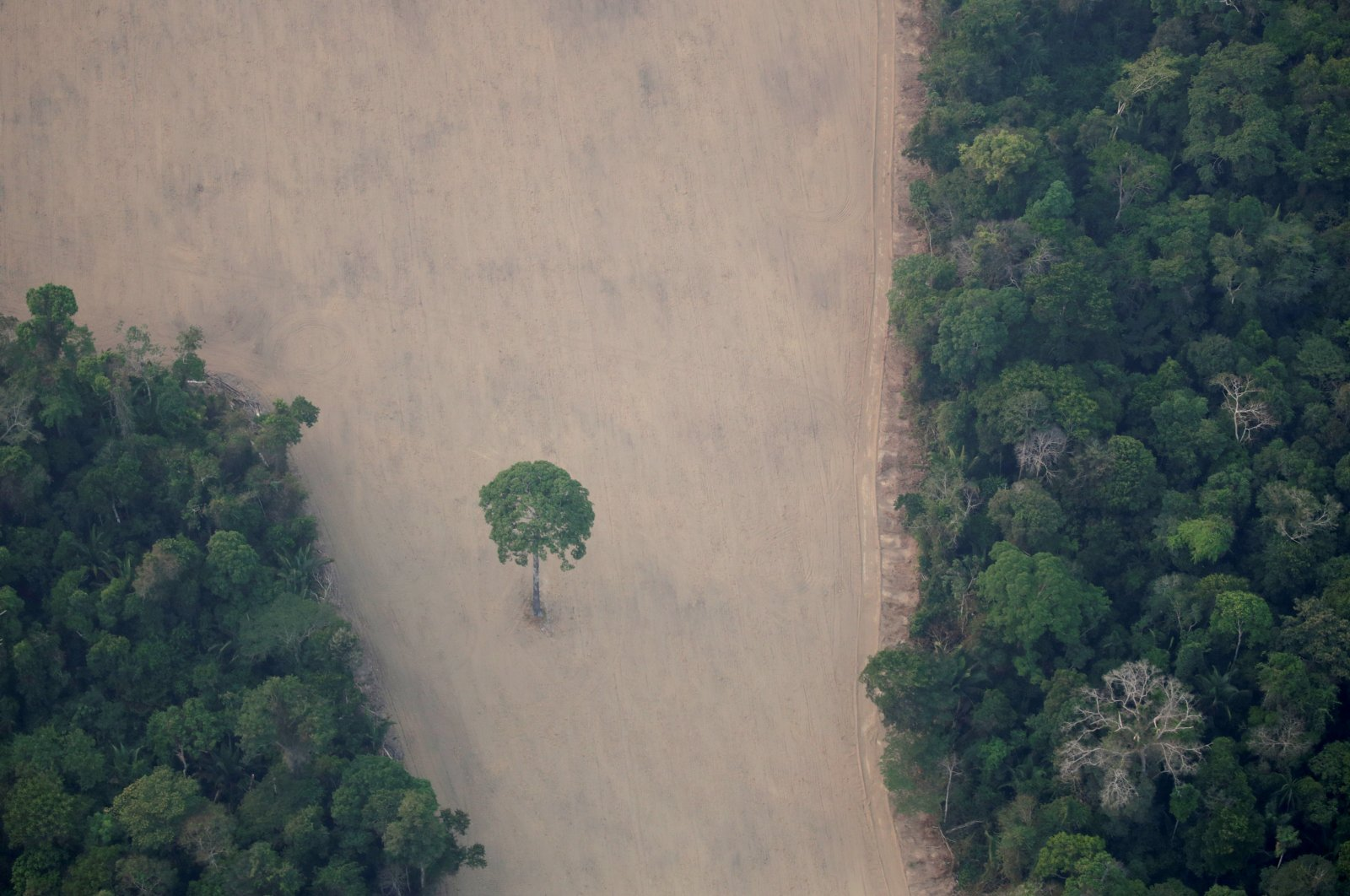 An aerial view shows a deforested plot of the Amazon near Porto Velho, Rondonia State, Brazil, Aug. 21, 2019. (Reuters Photo)