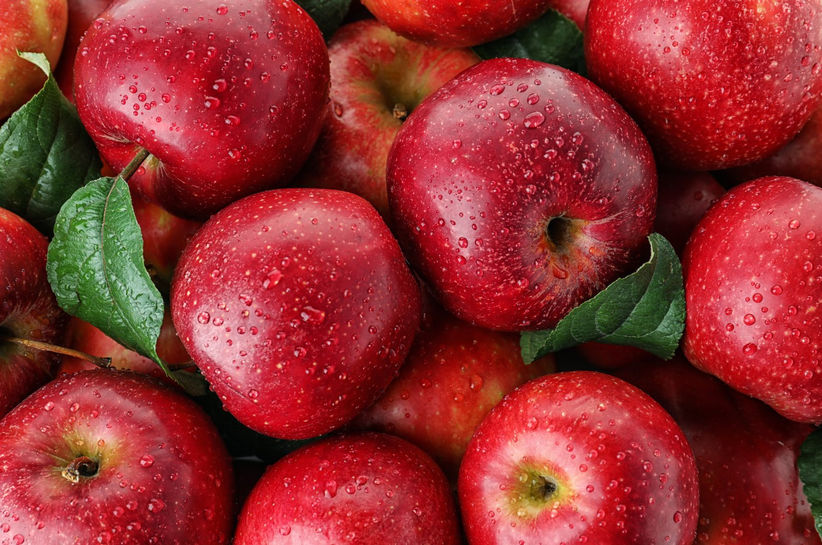 Turkey exported $90 million worth of apples in 2019. (File Photo)
