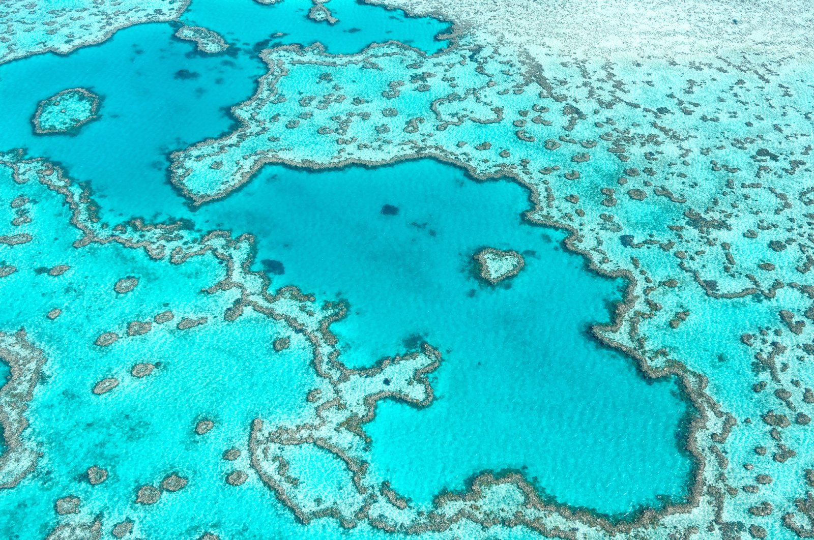A photo shows an aerial view of the Great Barrier Reef across the Whitsundays, Queensland, Australia. (iStock Photo)