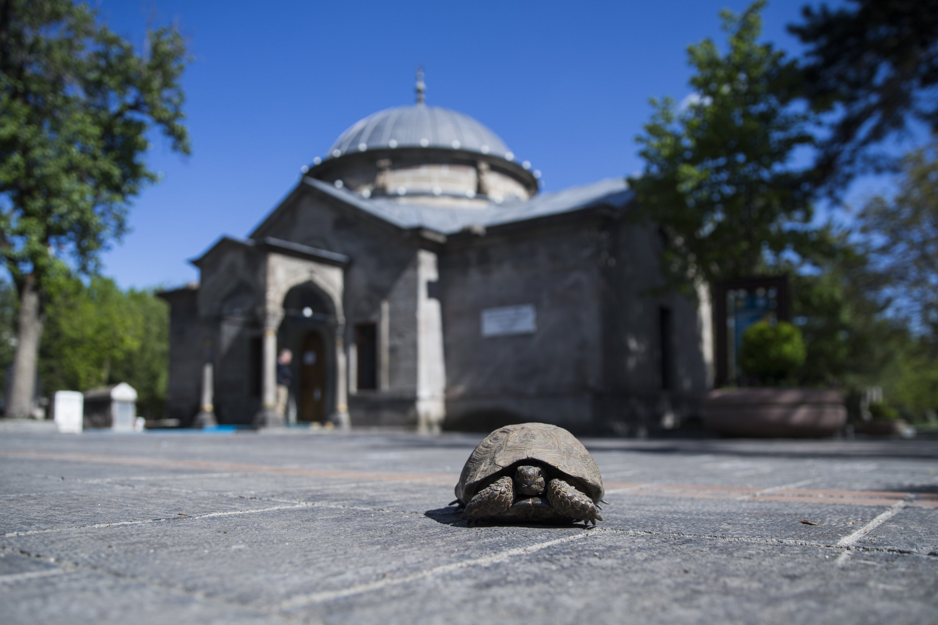 The tomb of Sayyid Burhaneddin is closed to visitors because of the COVID-19 pandemic, Kayseri, Turkey. (AA Photo)