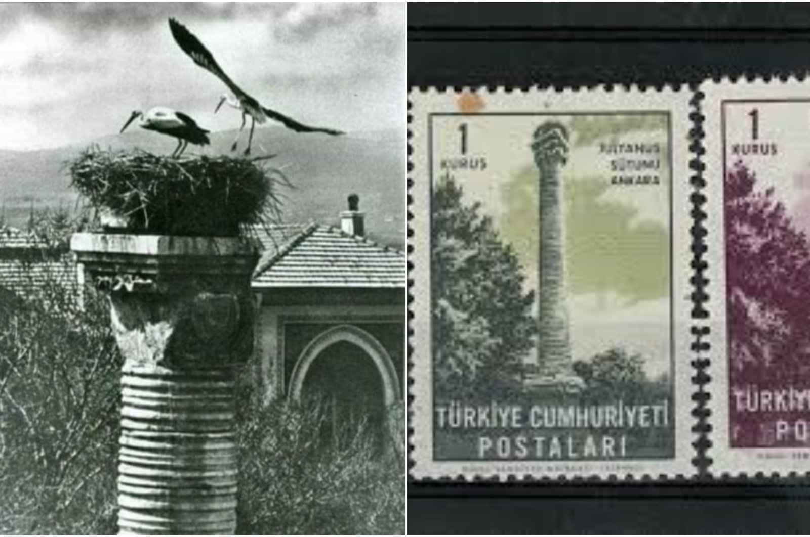 Over the years, the column and the storks' nest have become a symbol of the capital city. (iStock Photo)