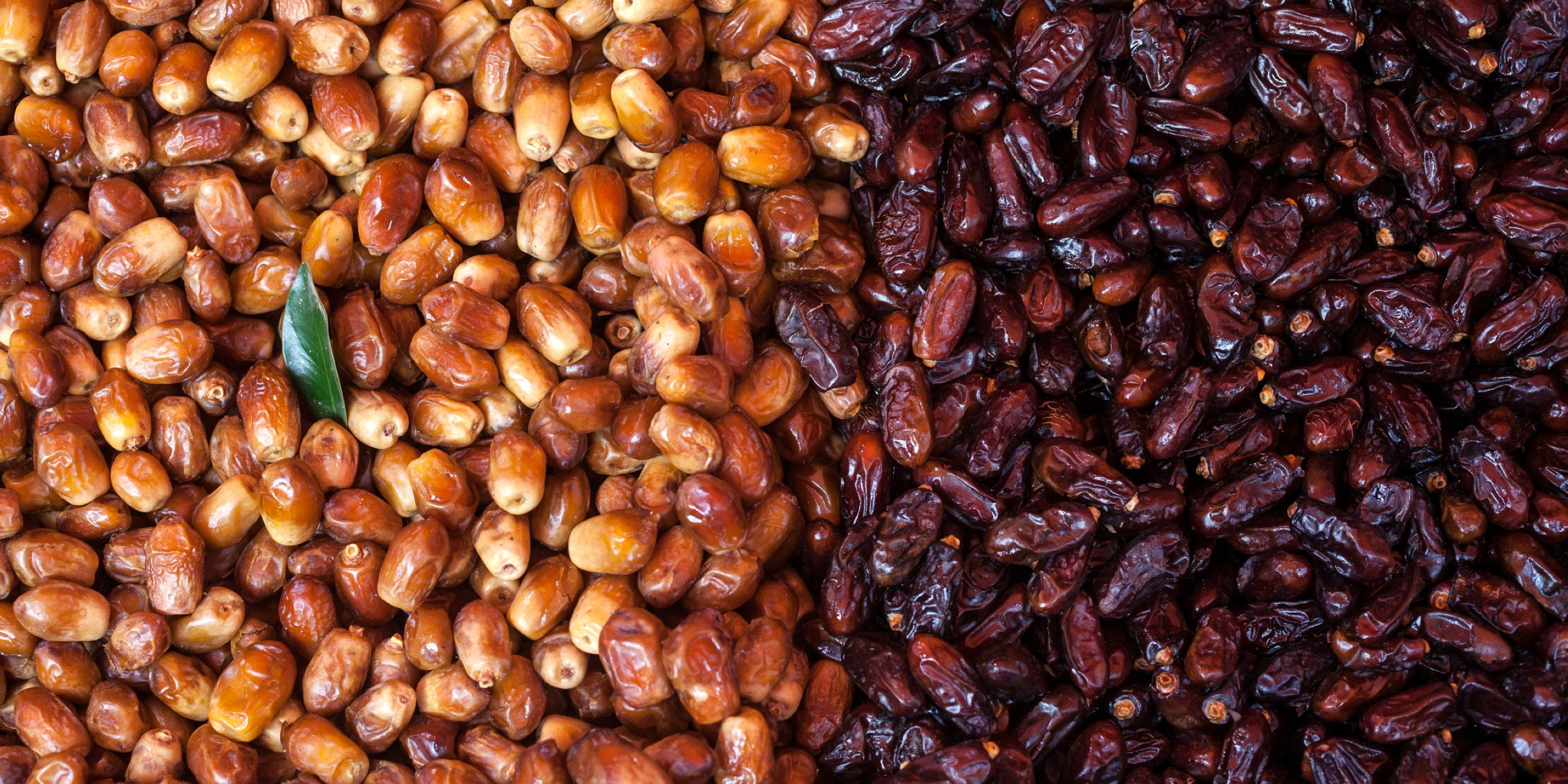 8 reasons you should be eating dates, the fruit of Ramadan year-round