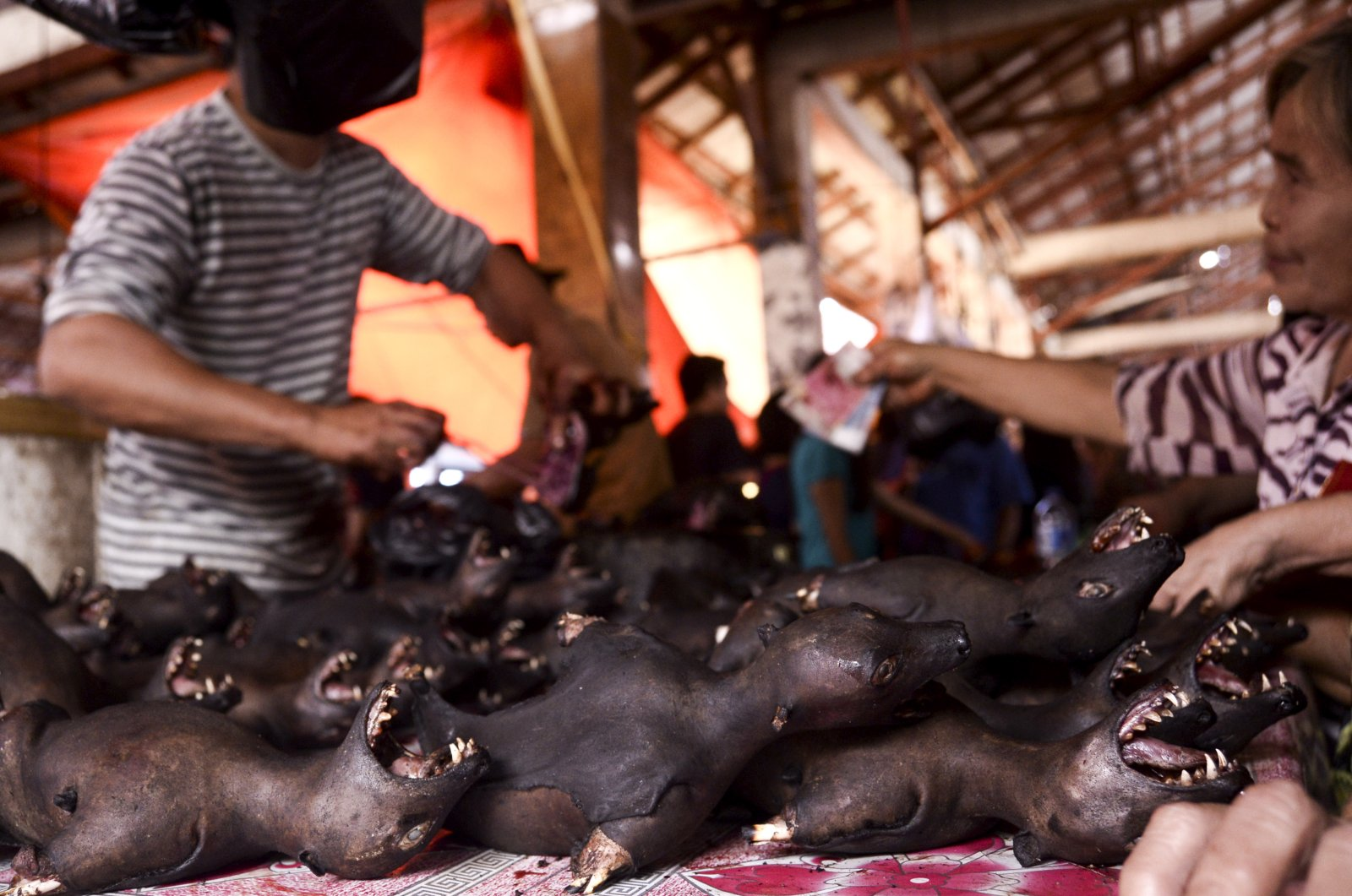 Roasted fruit bats are offered at the traditional meat market in Tomohon, North Sulawesi, Indonesia, Sept. 27, 2016. (EPA Photo)