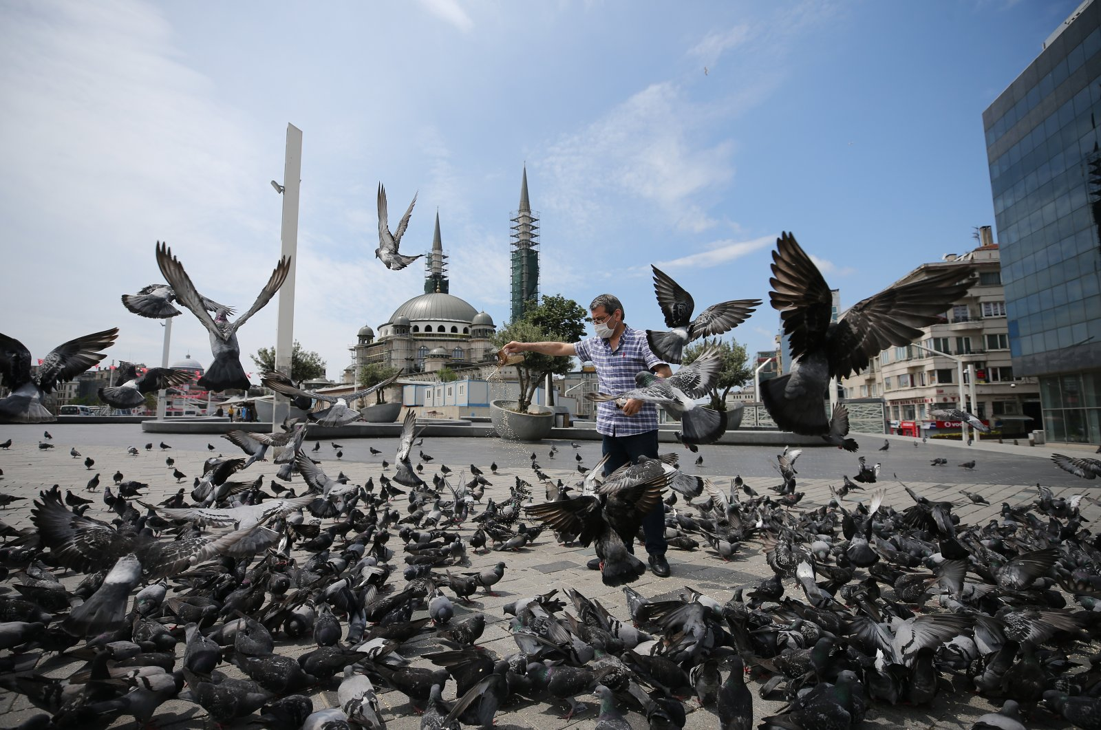 A man feeds the pigeons in Taksim Square, Istanbul, May 23, 2020. (AA Photo)