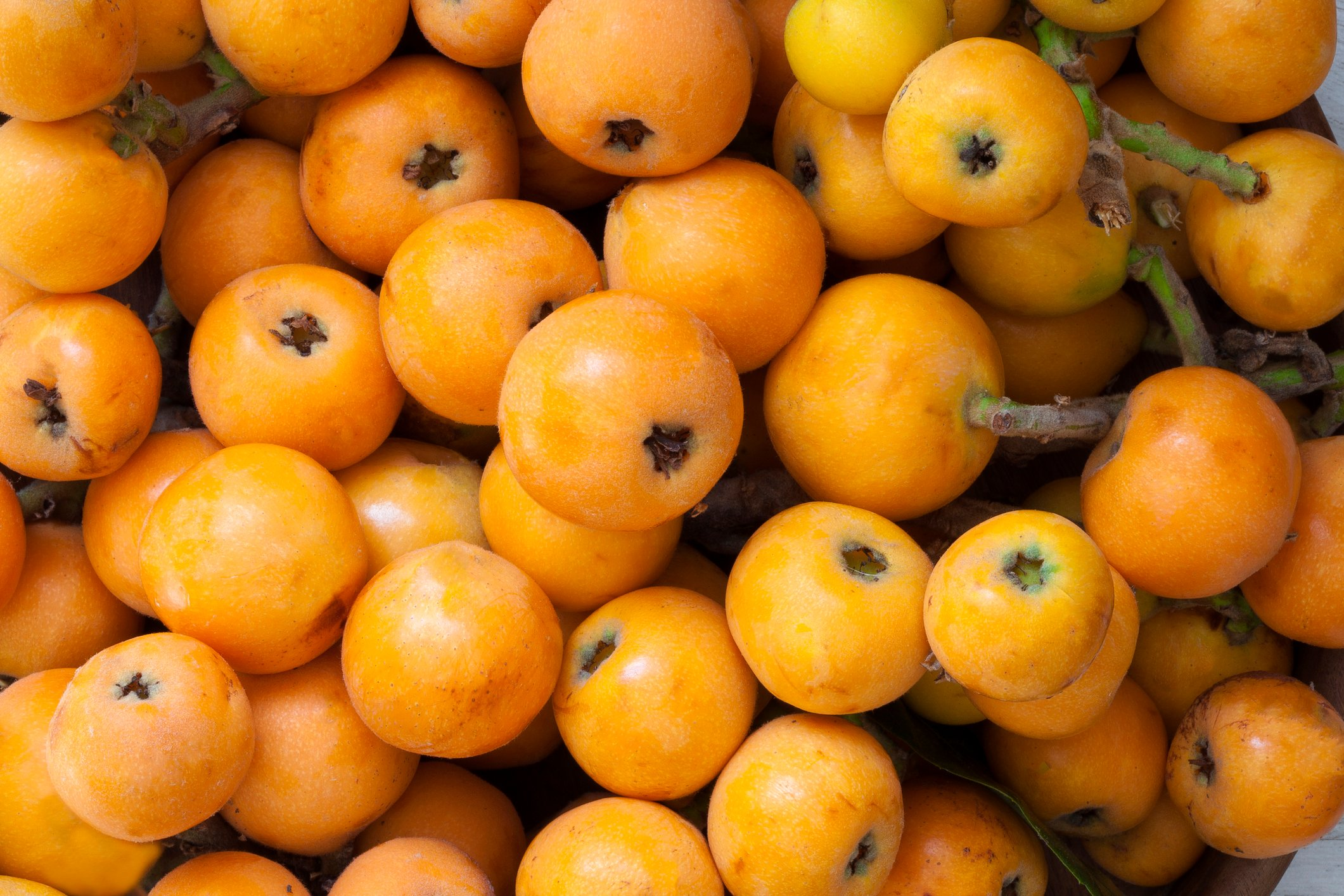 Turks will often get out of their cars and pick fresh loquats if they see them on the roadside. (iStock Photo)