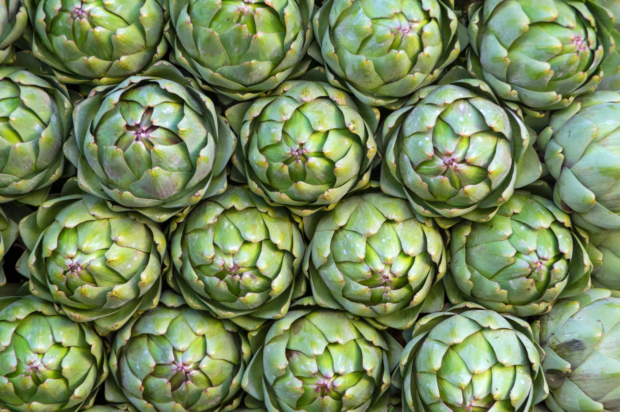 Artichokes even have their own festival in Turkey. (iStock Photo)
