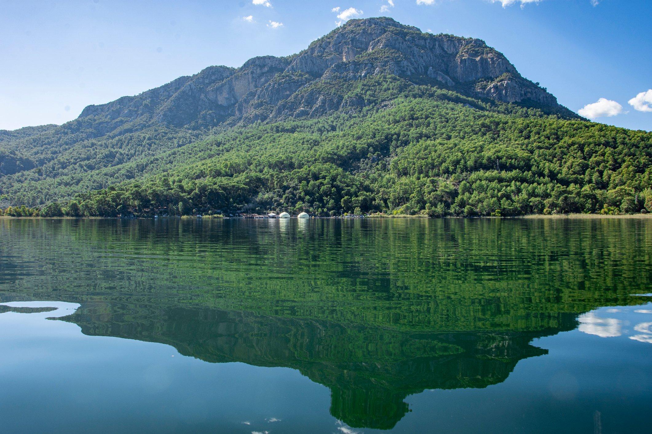 A forest of sweetgum trees surrounds Köyceğiz Lake. (iStock Photo)