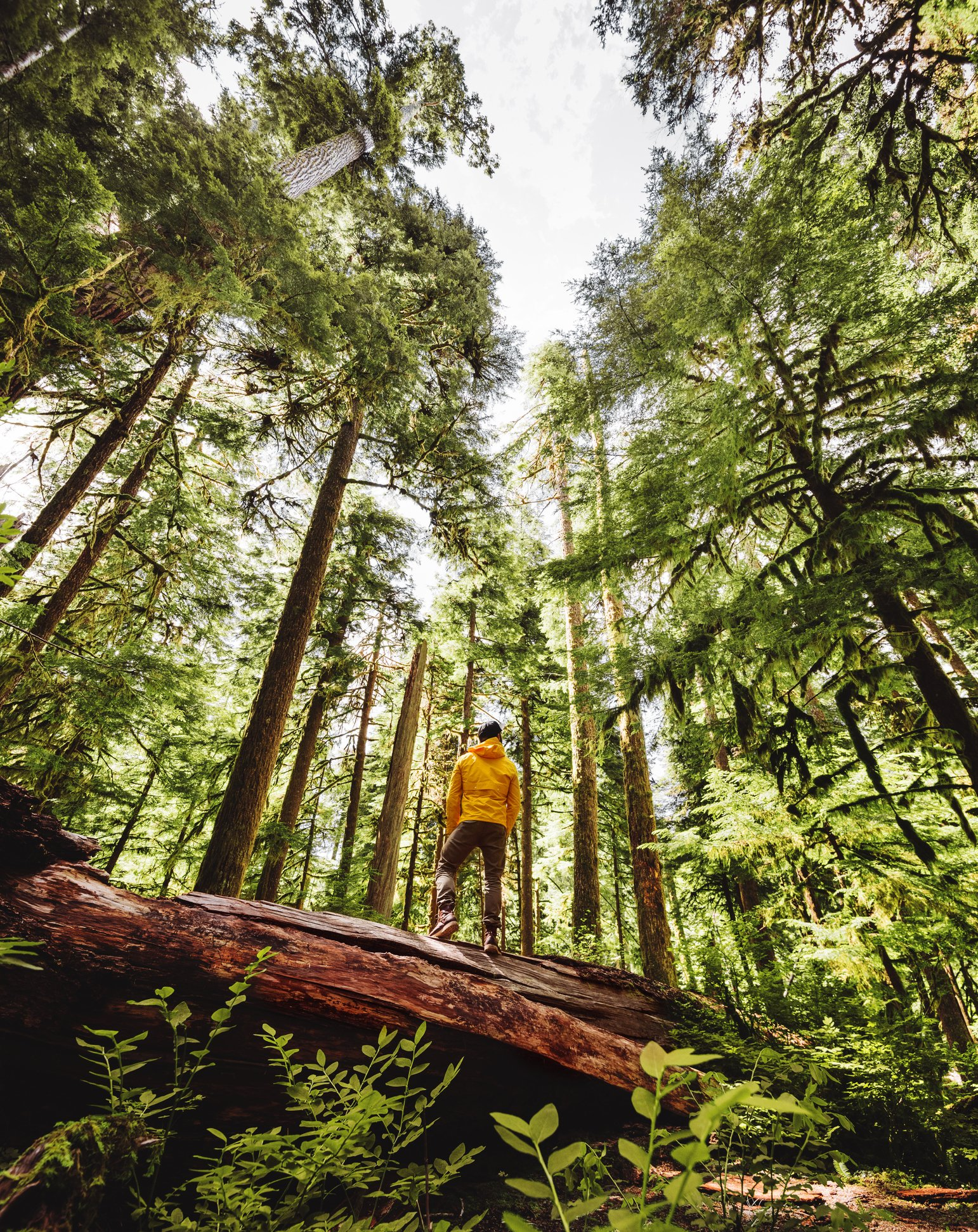 Consider alternate ways of connecting to more frequented trails to avoid crowds. (iStock Photo)