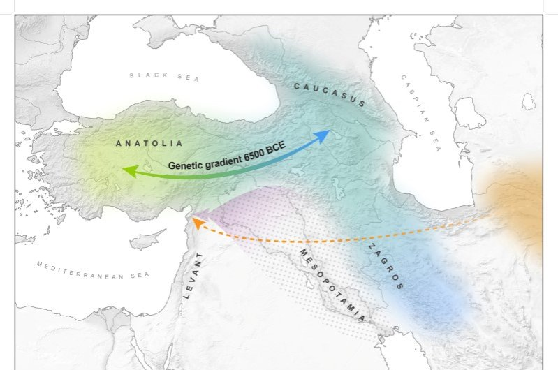 West Asia, which includes Anatolia, the Northern Levant and the Southern Caucasus, is seen in this partial map. The orange marker shows the route from Central Asia. (Max Planck-Harvard Research Center / via Reuters)