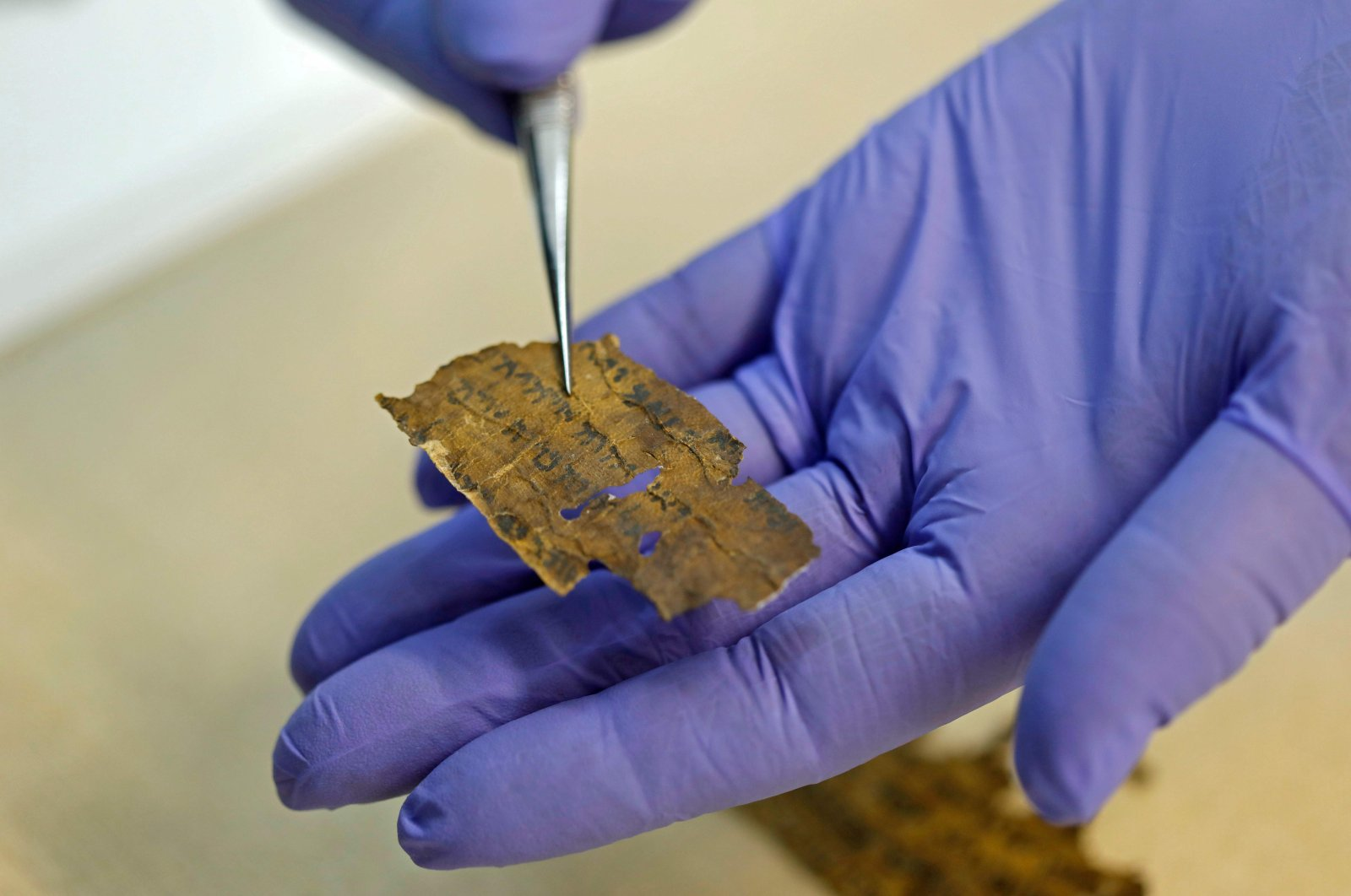 A conservator of the Israeli Antiquities Authority shows fragments of the Dead Sea Scrolls at their laboratory in Jerusalem, Israel, June 2, 2020. (AFP Photo)