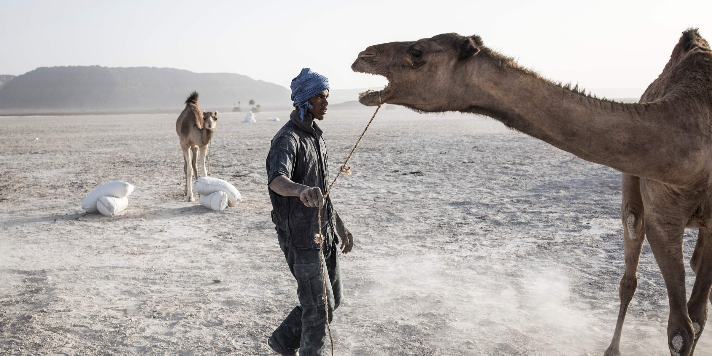 Mobile camel library keeps Ethiopian children from forced labor