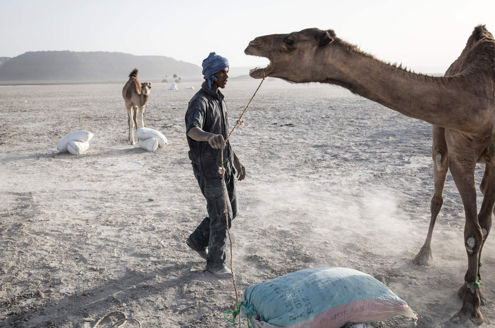 Men load camels with large bags of salt, mined from a salt field on the outskirts of the Neolithic trading town of Tichitt, Mauritania, Jan. 28, 2020. (AFP Photo)
