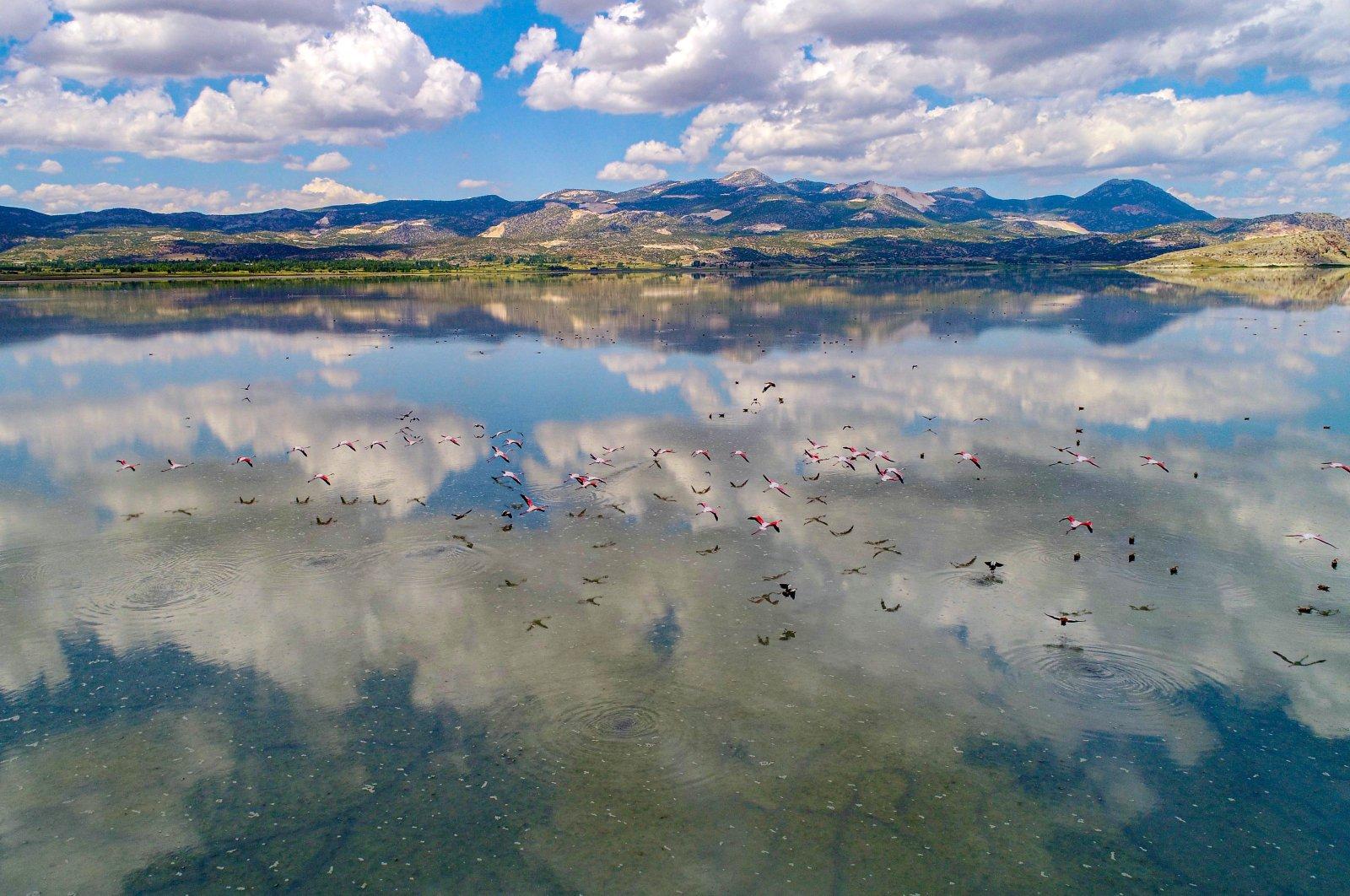 Migratory birds fly over Yarışlı Lake, Burdur, June 6, 2020. (DHA Photo)