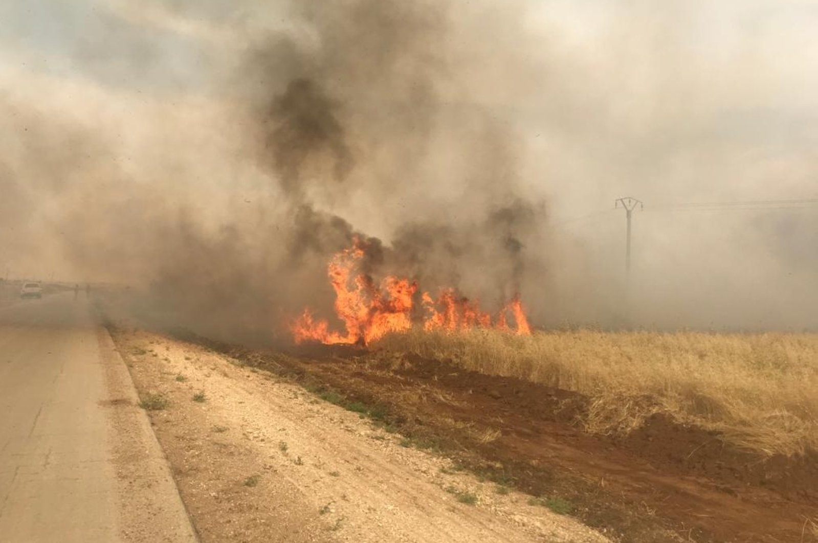 An agricultural field burned by the YPG terrorists in Operation Peace Spring area in northern Syria, May 26, 2020. (AA)