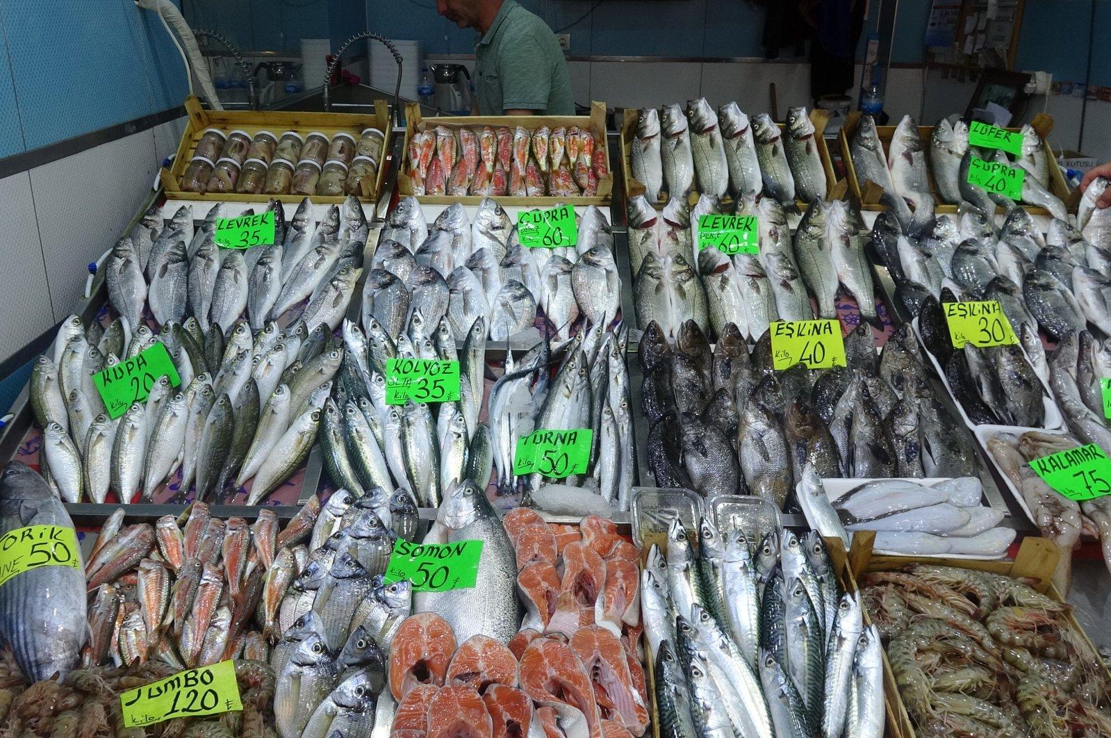 Fish on a stall in a fish market in Çanakkale, Turkey, June 10, 2020. (IHA Photo)