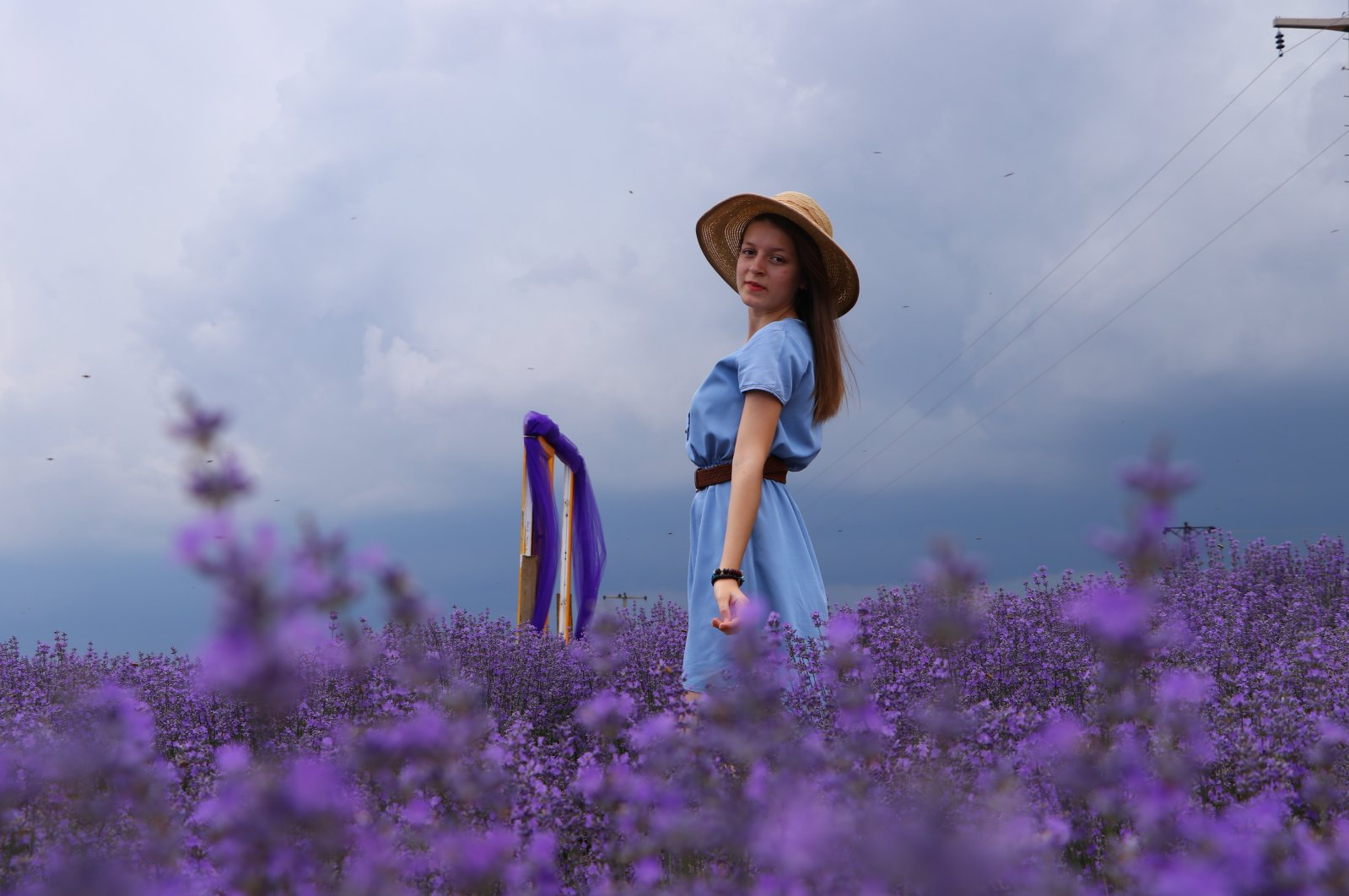 Lavender fields have proven popular spots in recent years for impromptu photo ops. (AA Photo)