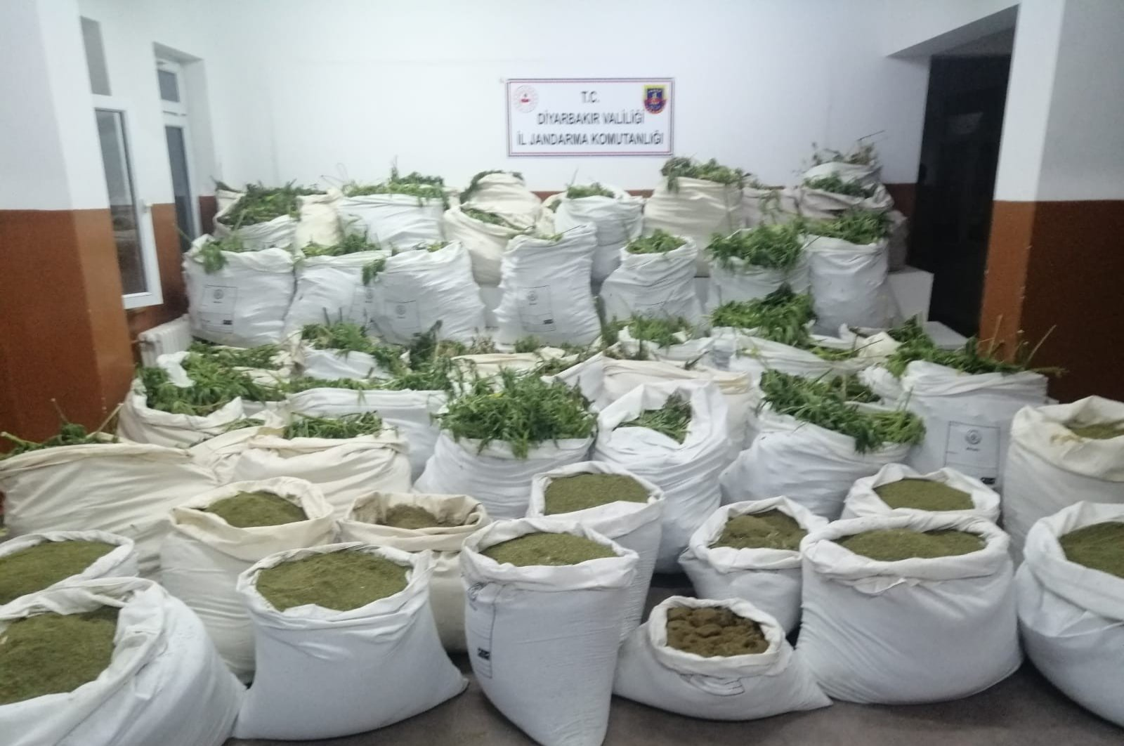 Seized marijuana on display at security forces headquarters in Diyarbakır, Turkey, June 22, 2020. (IHA Photo)