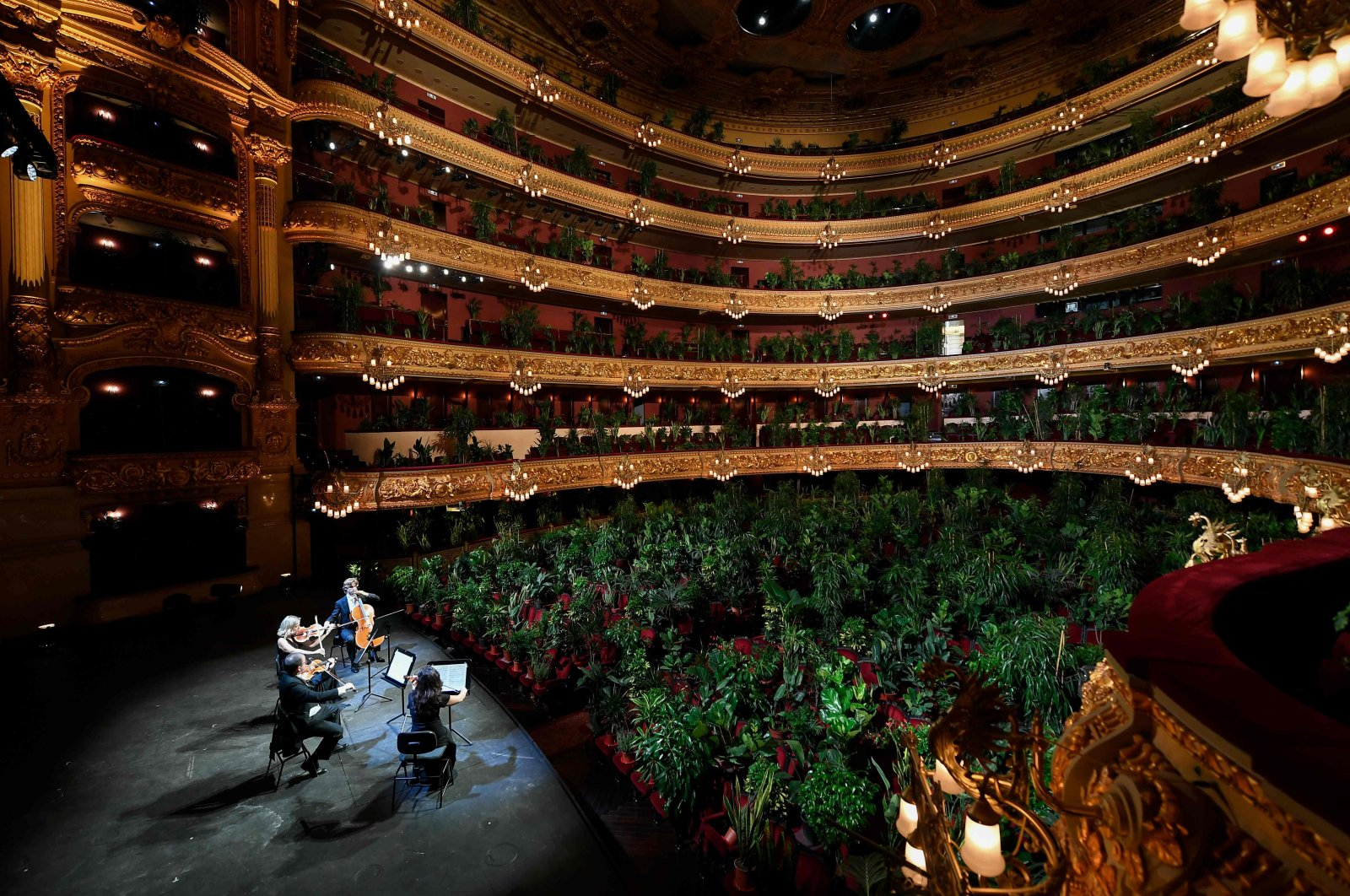 The Uceli Quartet perform for an audience made of plants during a concert created by Spanish artist Eugenio Ampudia and that will be later streamed to mark the reopening of the Liceu Grand Theatre in Barcelona on June 22, 2020. (AFP Photo)