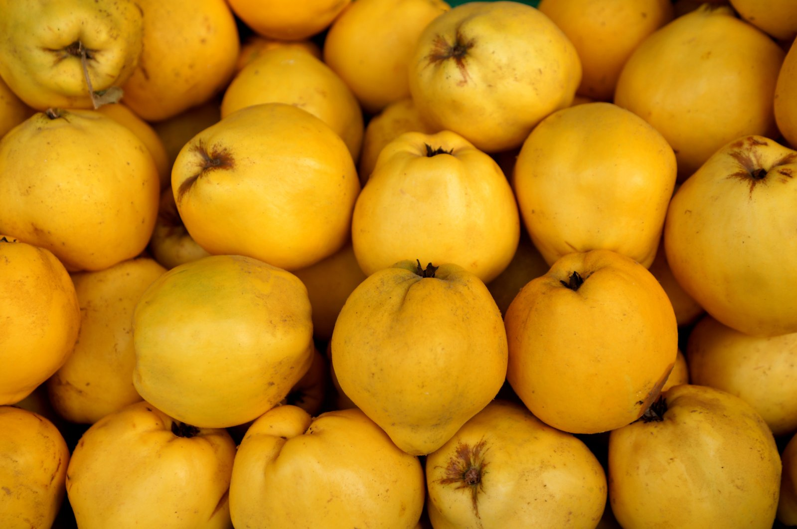 While most people's faces would pucker at the thought of eating quince raw, many Turks love to have some fresh slices of the fruit. (iStock Photo)