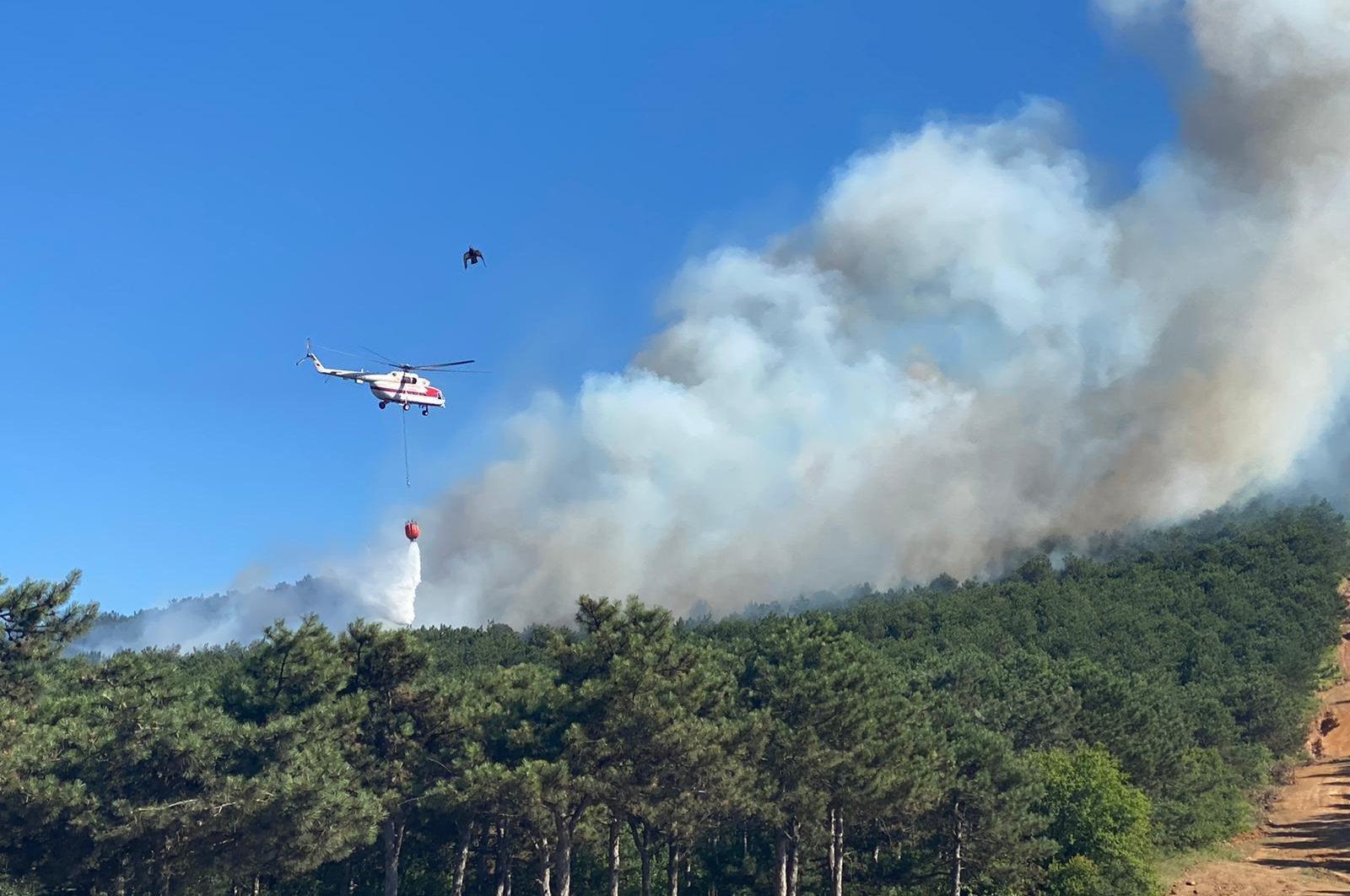 A forest fire broke out near Kayışdağı neighborhood in Istanbul's district of Maltepe, on June 28, 2020. (DHA Photo)