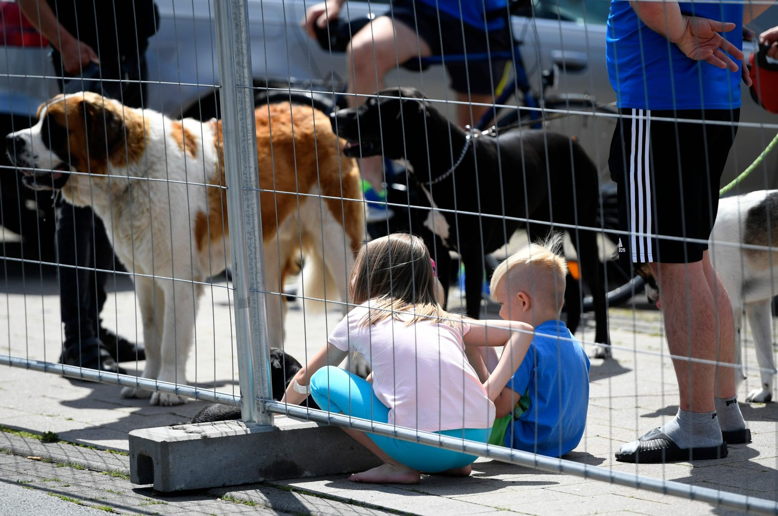 Children sit on the ground beside dogs at the residential homes of employees of abattoir company Toennies during their quarantine in the district Suerenheide of Verl, June 22, 2020. (AFP Photo)