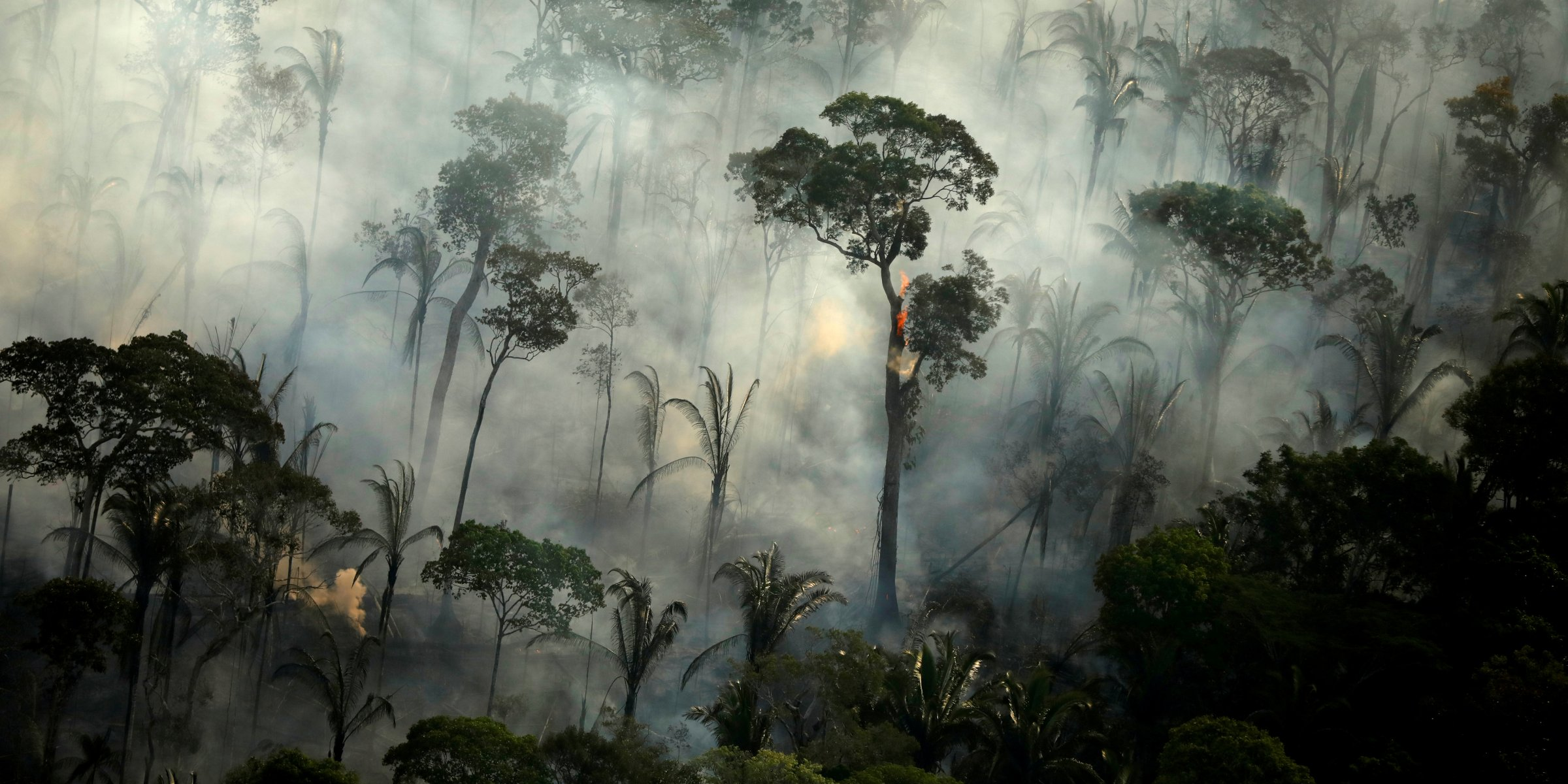 Brazilian Amazon sees worst June since 2007 for forest fires