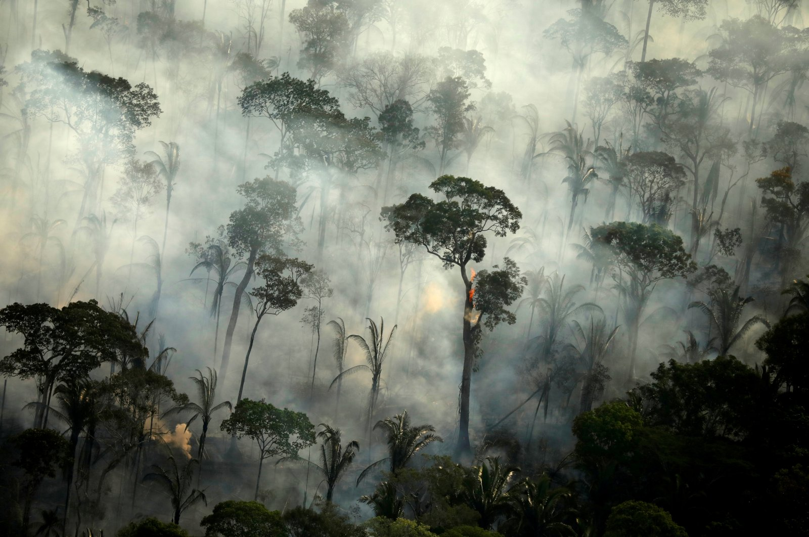 Smoke billows from a fire in an area of the Amazon rainforest near Porto Velho, Rondonia State, Brazil, Sept. 10, 2019. (Reuters Photo)