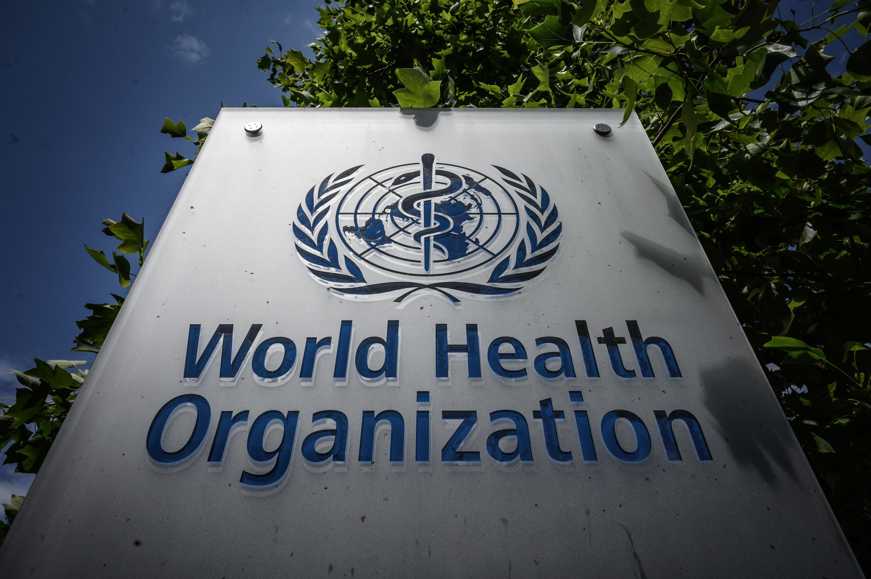 WHO reports record daily increase in global coronavirus cases ...