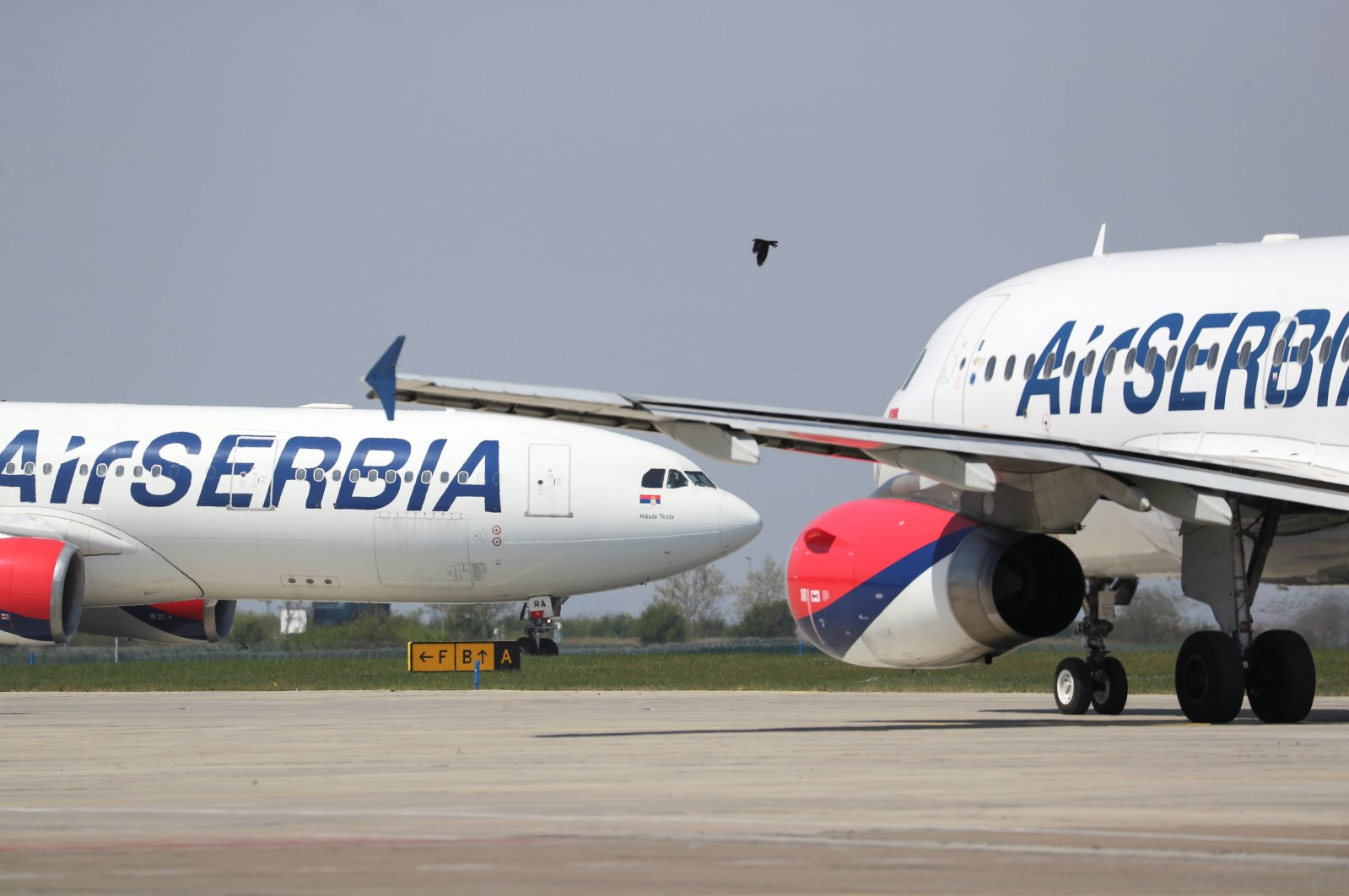 Air Serbia planes are seen at Nikola Tesla Airport, Belgrade, Serbia, April 25, 2020. (Reuters Photo)