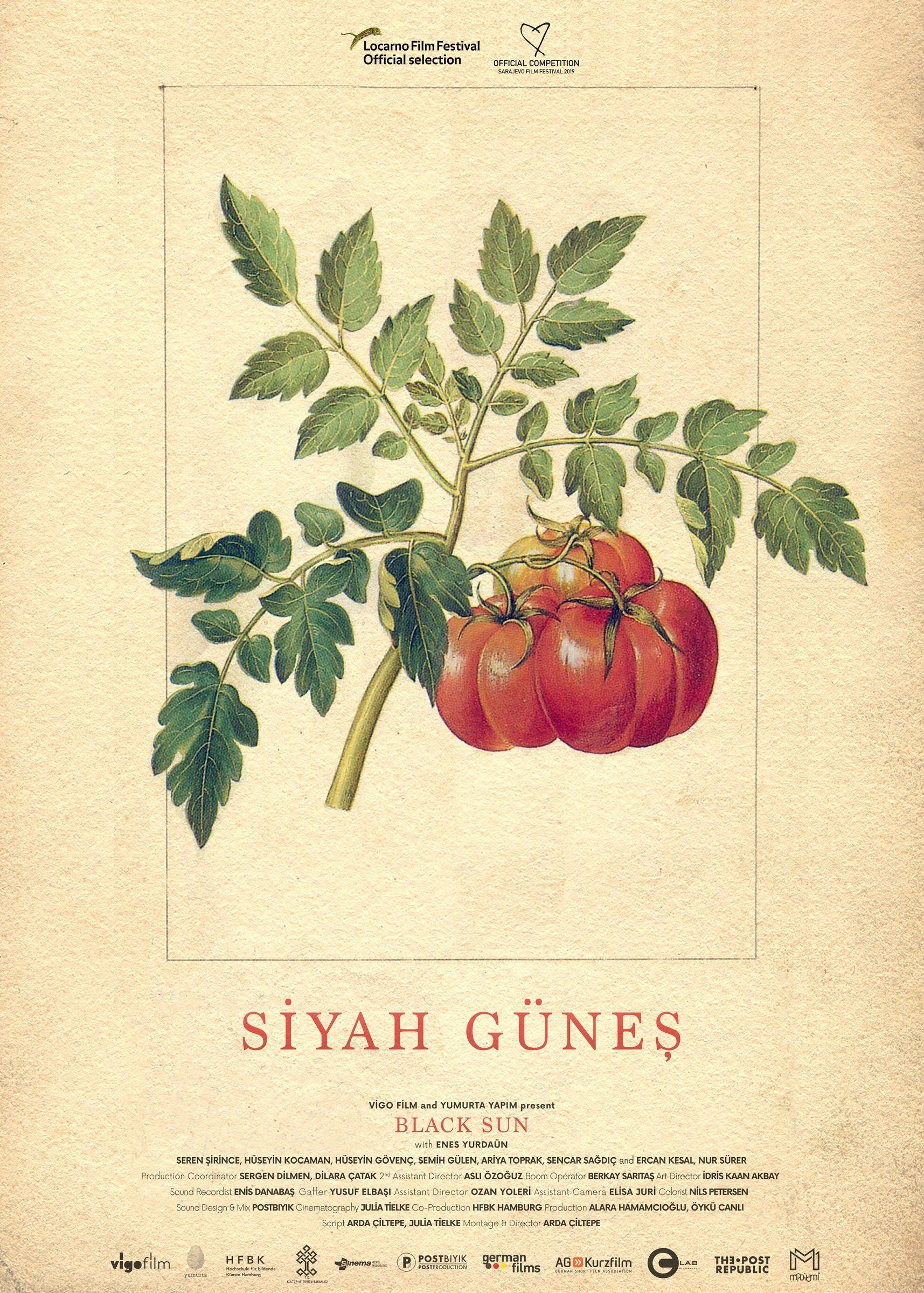 "The movie poster for ""Siyah Güneş"" ("