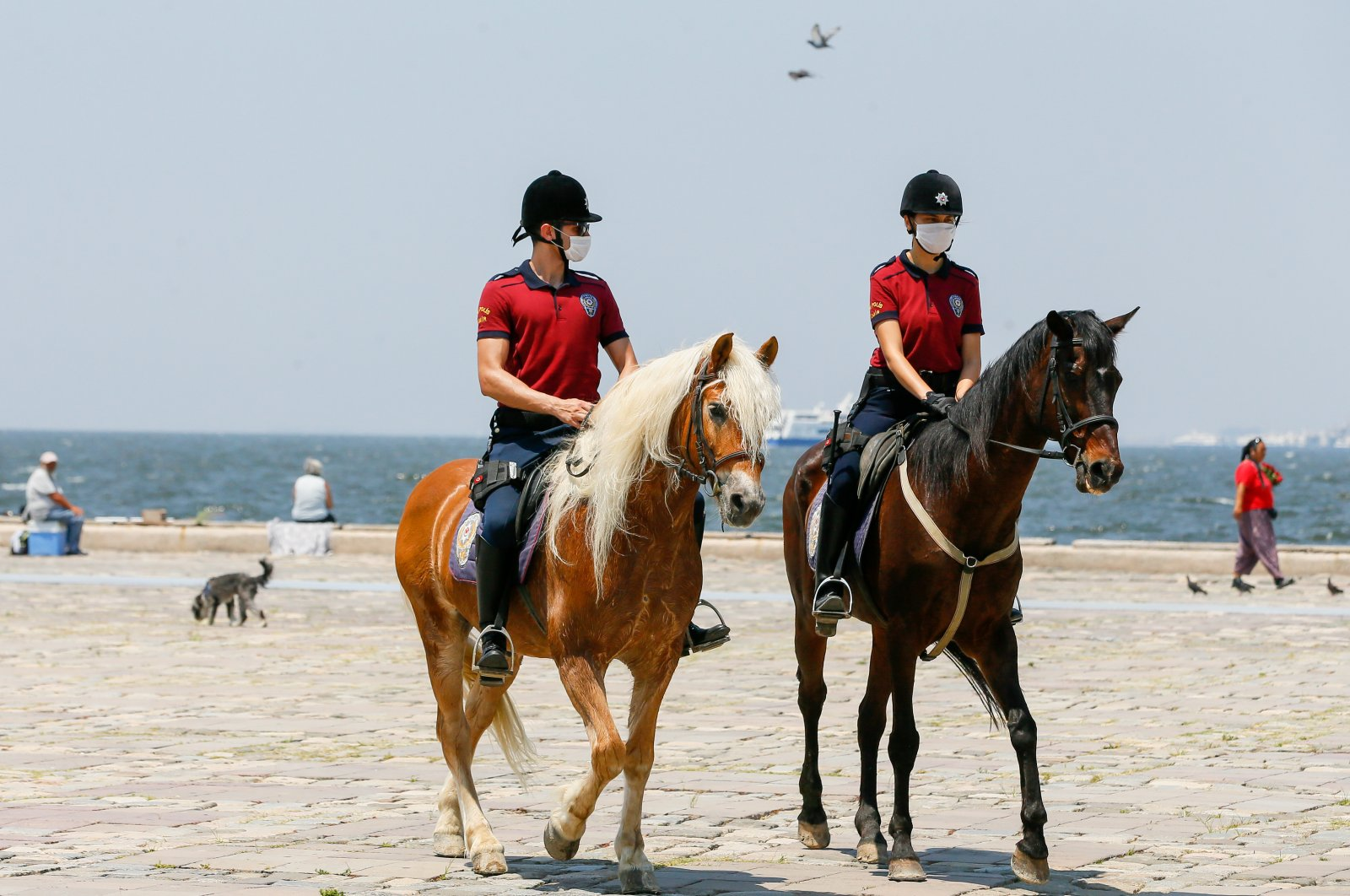 Police ride Haflinger horses in Izmir, Turkey, July 9, 2020. (AA Photo)