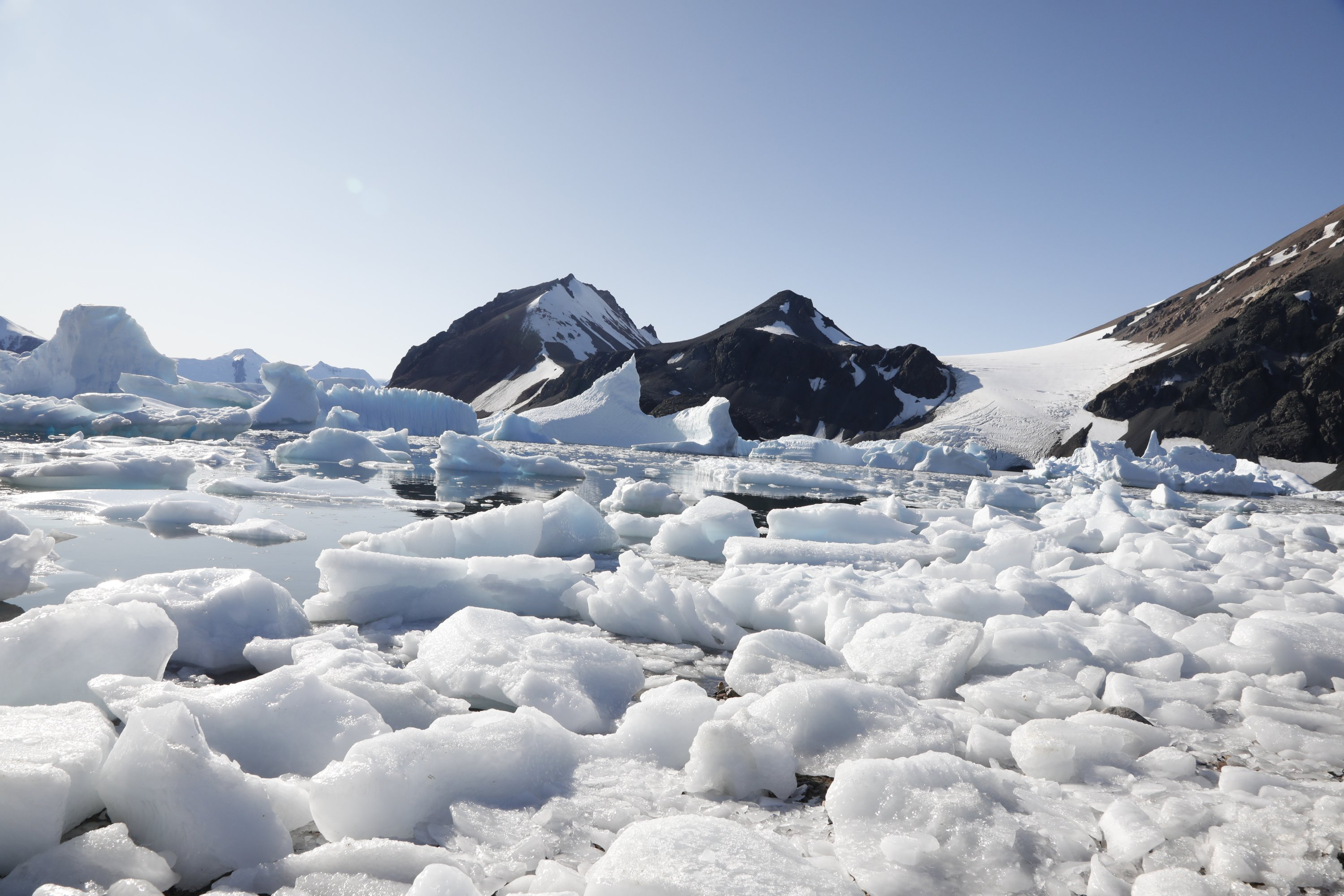 A snippet from Antarctica's ice floes and waters. (Photo by Hayrettin Bektaş)