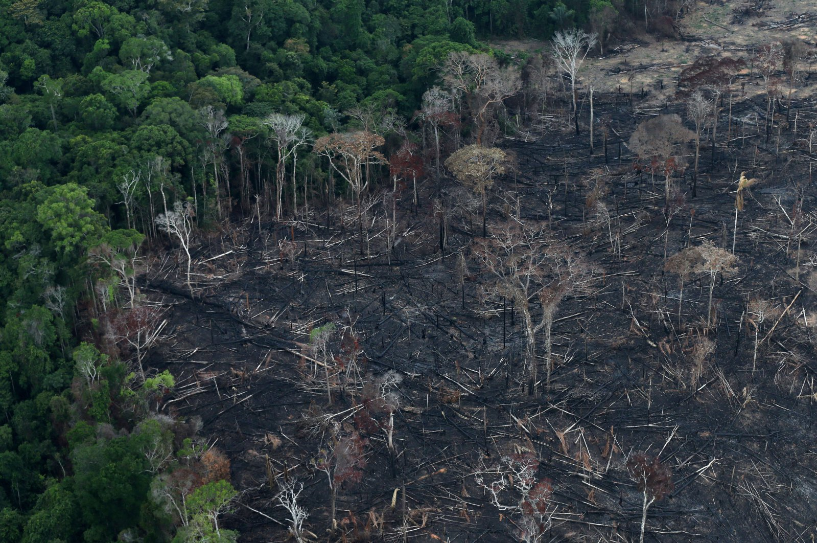 An aerial view of a tract of Amazon jungle after it was cleared by farmers in Itaituba, Para, Brazil, Sept. 26, 2019. (Reuters Photo)