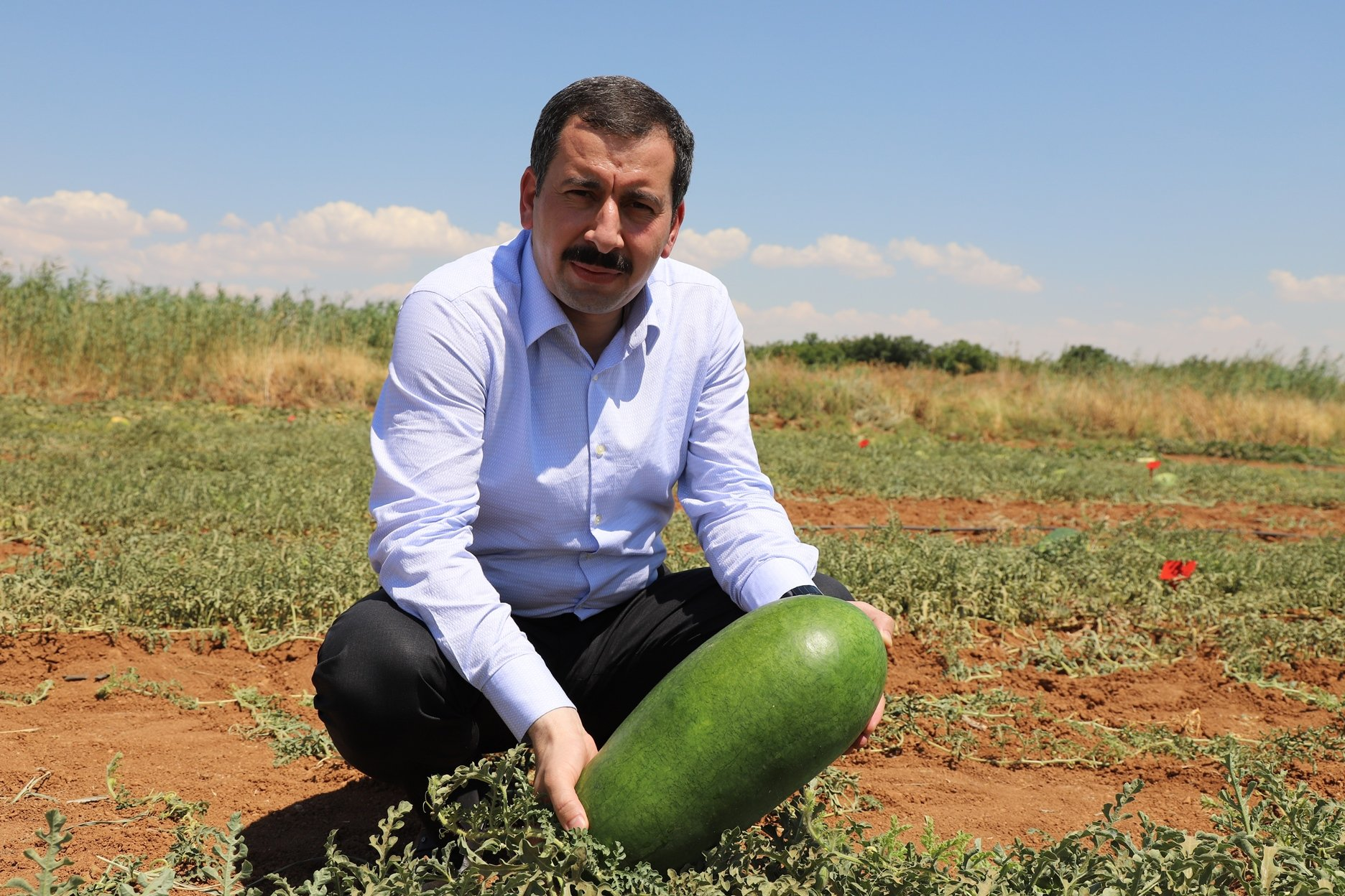 Metin Baydilli, the mayor of the Karaköprü Municipality, holds a watermelon in his hands, Şanlıurfa, Turkey, July 15, 2020. (AA Photo)