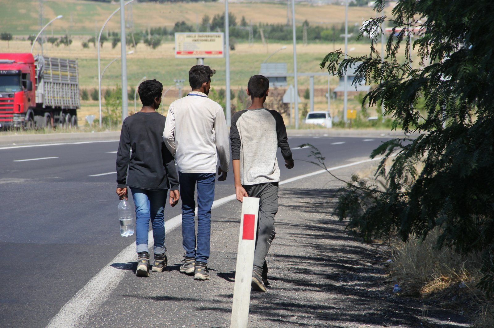 Three Afghan migrants walk on a highway in southeastern Diyarbakır province, July 16, 2020. (IHA)