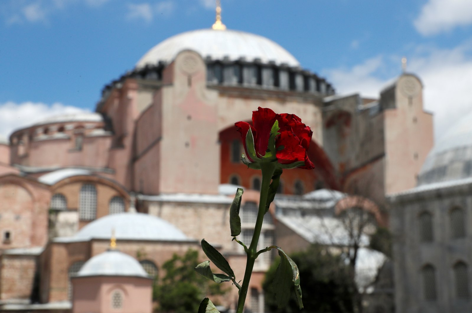 A red rose is attached to the security barriers in front of the Hagia Sophia in Istanbul, July 17, 2020. (REUTERS)