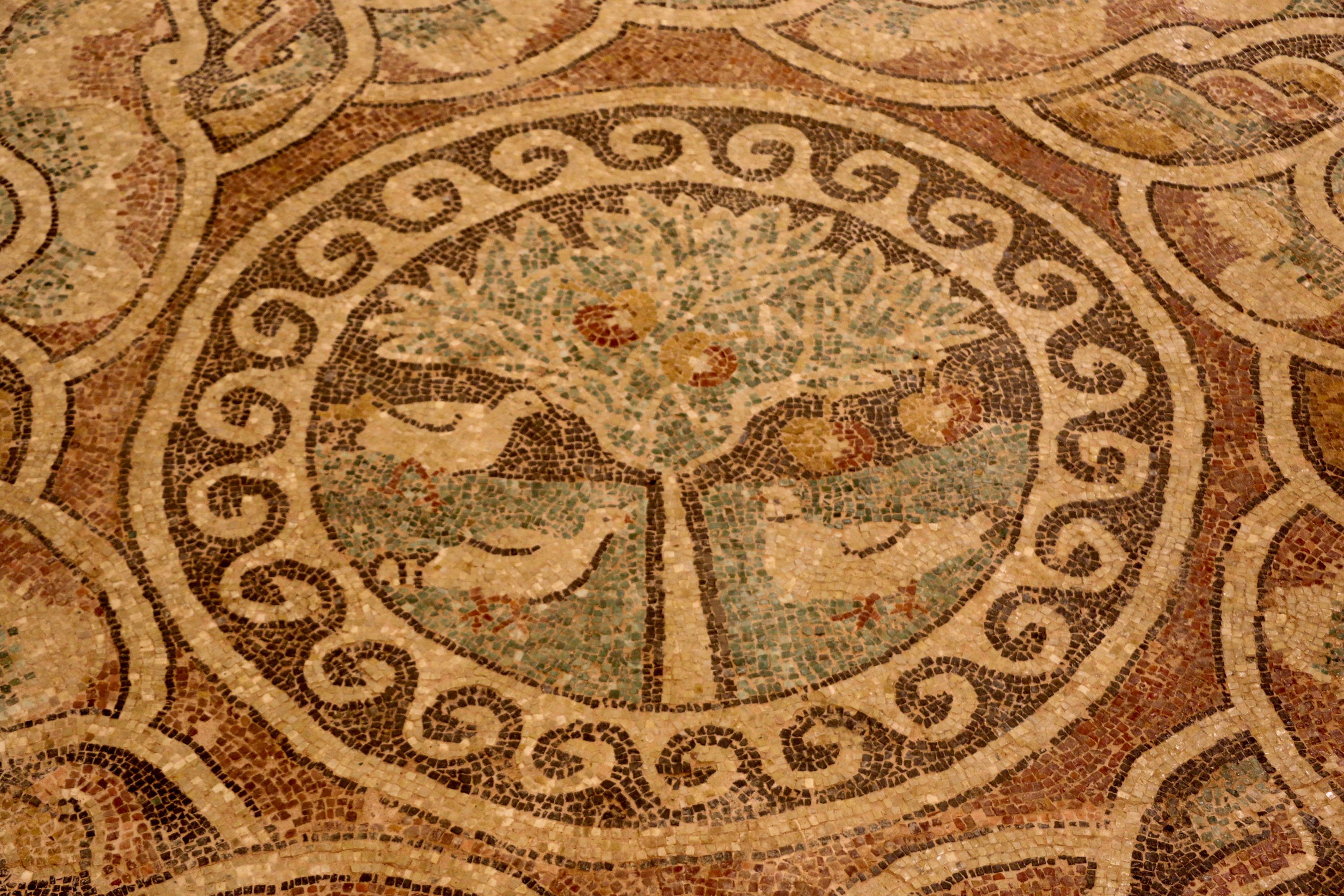 The 1,800-year-old mosaic with apple figures in Amasya. (DHA Photo)