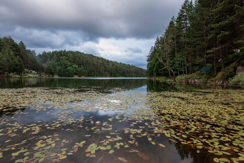 Bozcaarmut lake in Bilecik province in northwestern Turkey, June 29, 2019. (Shutterstock Photo)