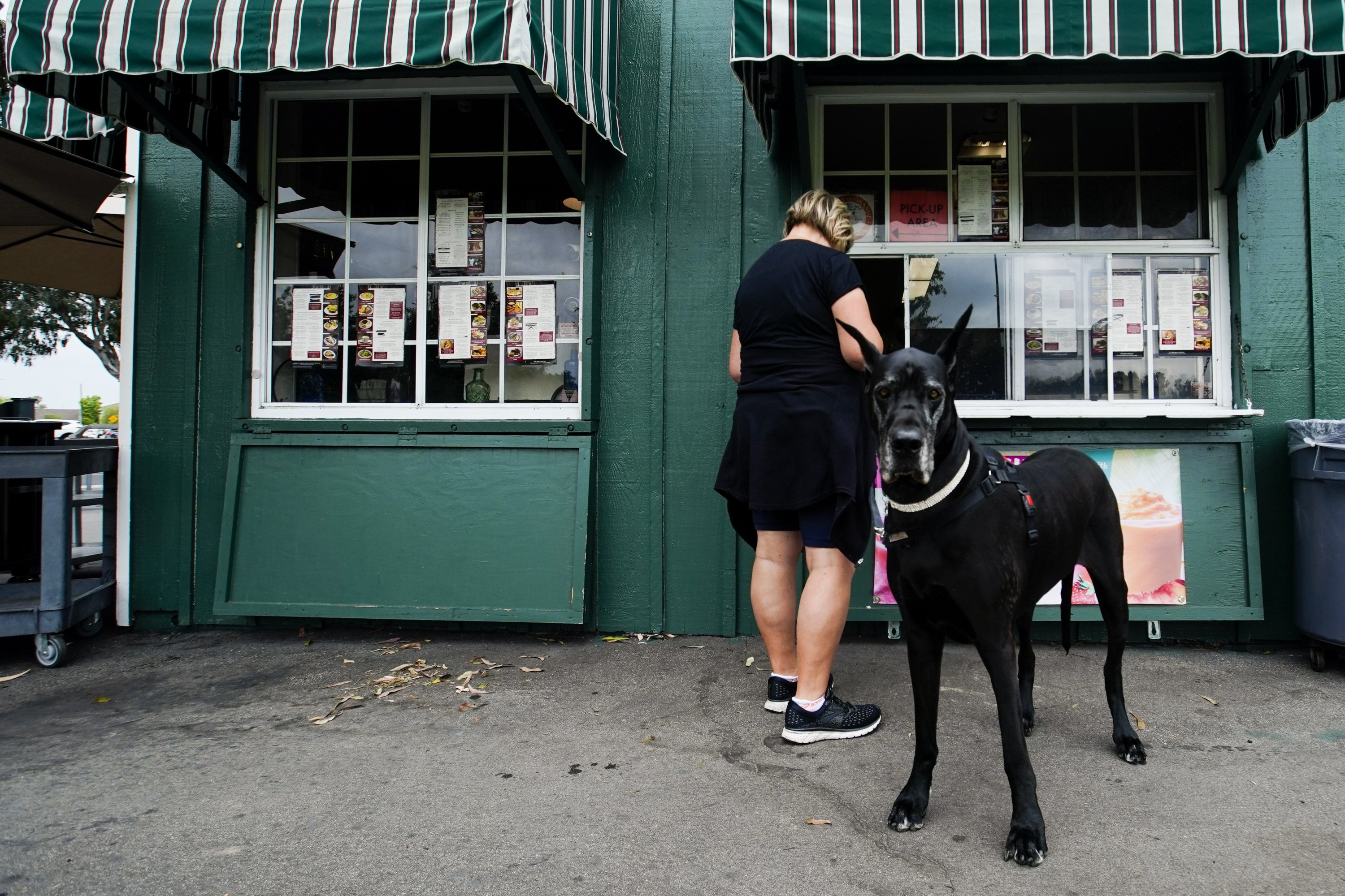 Debbis Rime orders at the take-out window with her dog Maddie at the Park Bench Cafe on Tuesday, May 12, 2020, in Huntington Beach, Calif. (AP Photo)