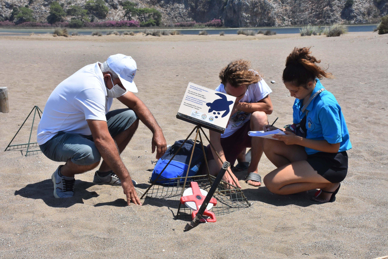 A group of researchers examines a nest set up for Caretta carettas on Iztuzu Beach in Dalyan, Muğla, southwestern Turkey on July 20, 2020. (AA Photo)