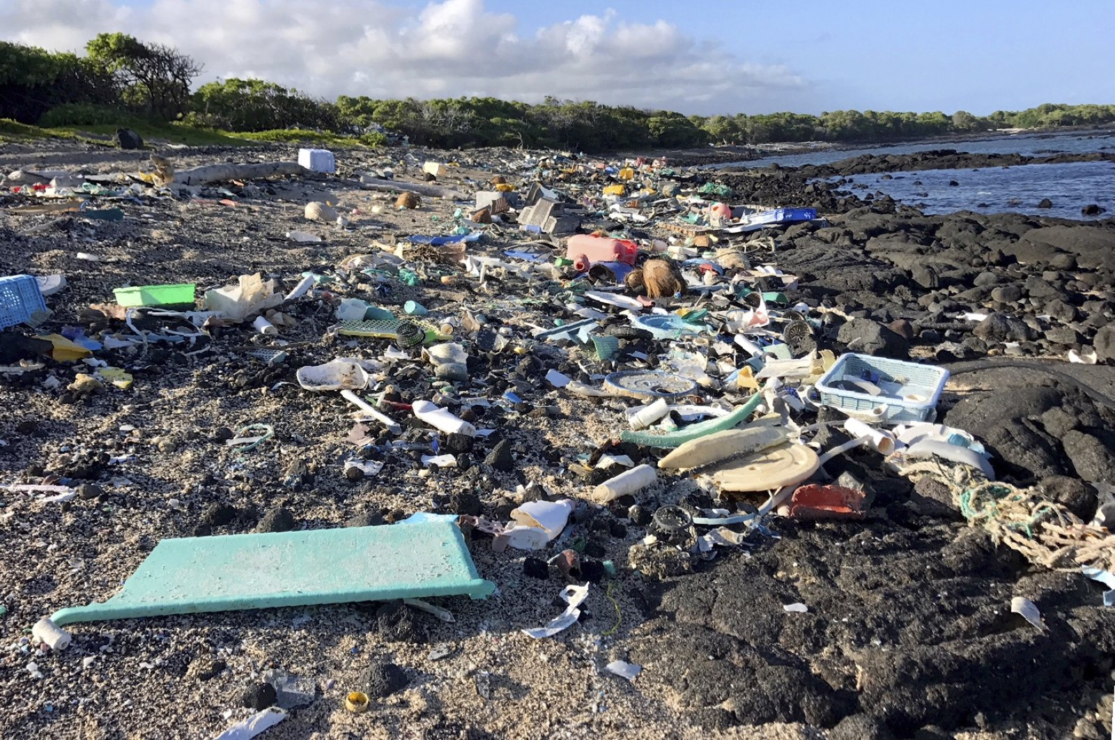 This photo provided by the Hawaii Wildlife Fund shows the beach at Kamilo Point in Naalehu, Hawaii, before a cleanup event, August 2018. (AP Photo)