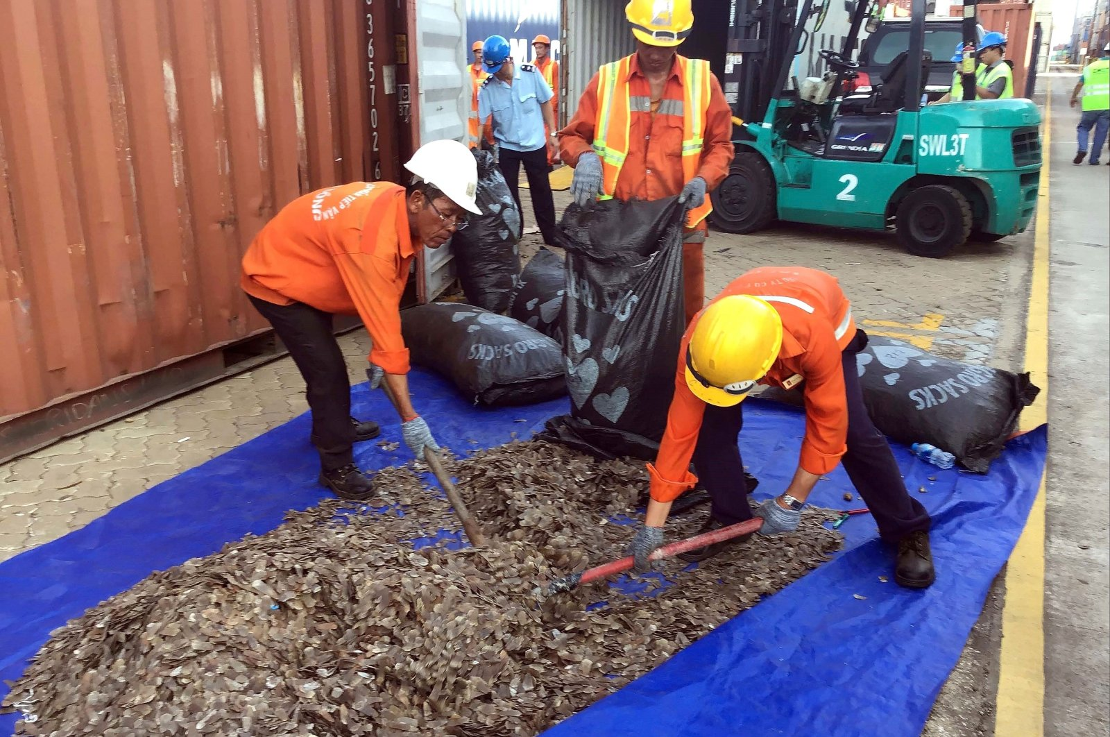Officials sort seized pangolin scales at a port in southern Vietnam's Ba Ria Vung Tau province, May 23, 2019. (AFP Photo)