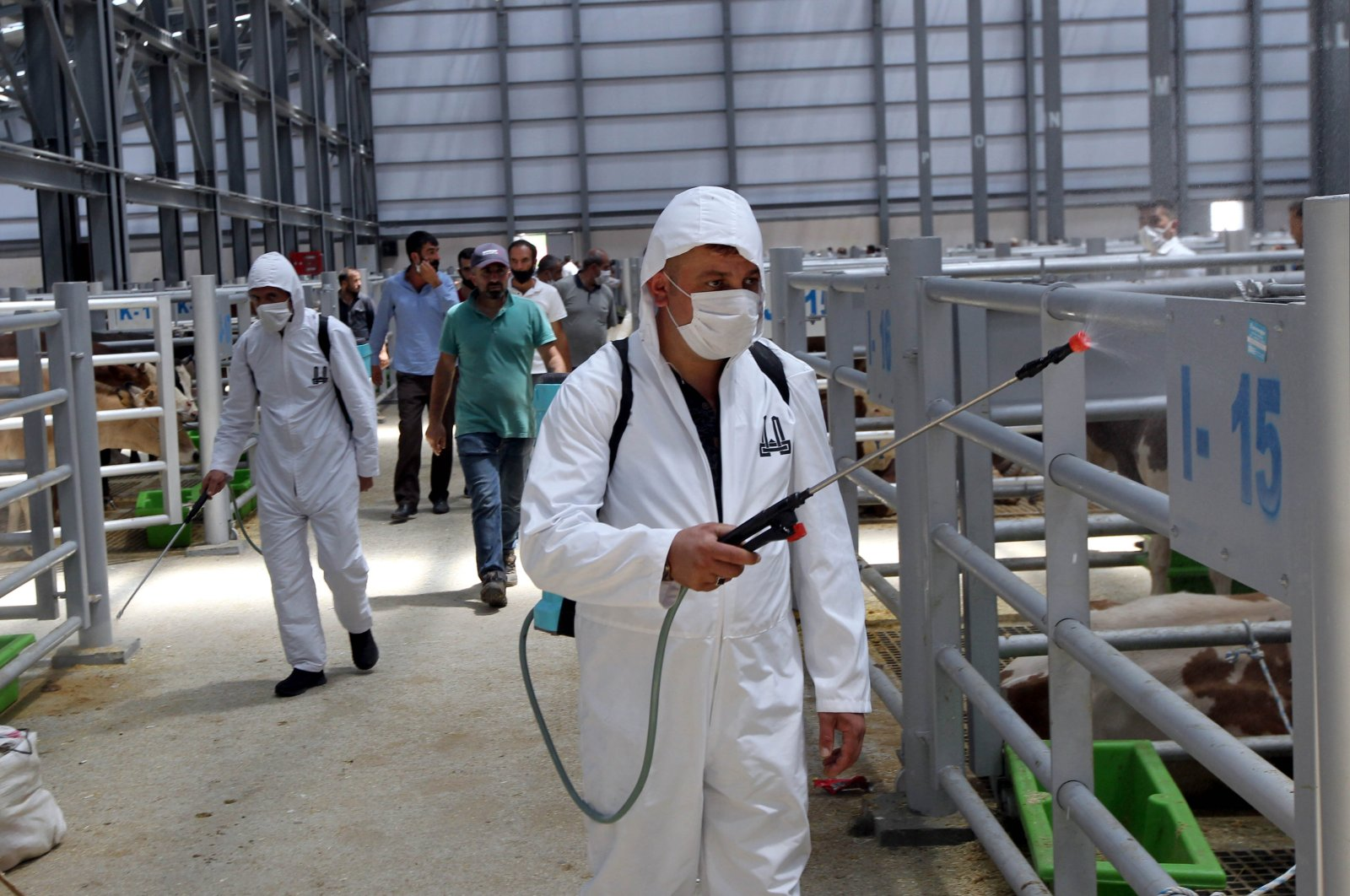 Municipality workers carry out disinfection work to prevent the spread of COVID-19 at a livestock market in Erzurum, Turkey, July 27, 2020. (AA Photo)